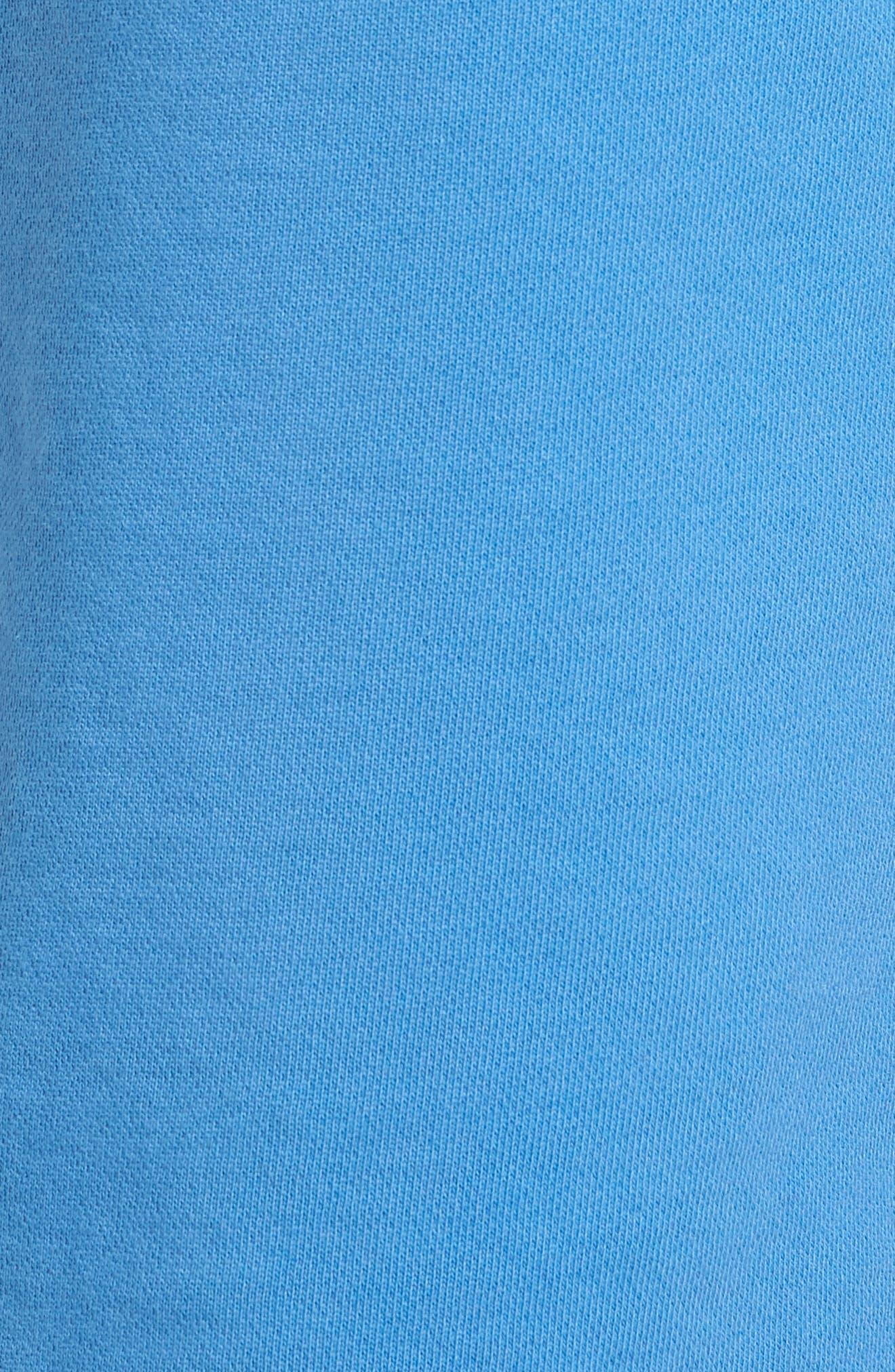 Core Shorts,                             Alternate thumbnail 5, color,                             DIGITAL BLUE