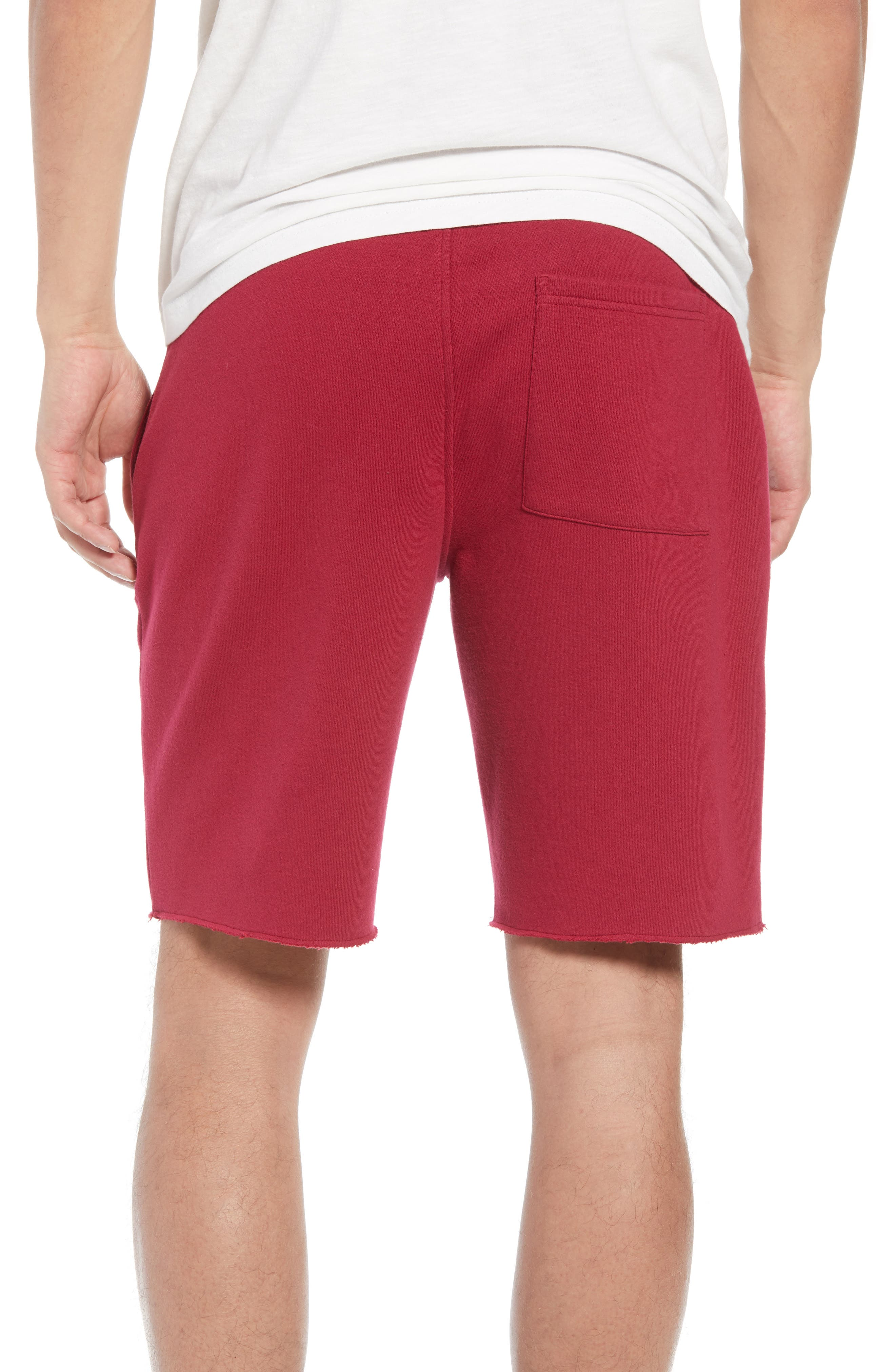 THE RAIL,                             Fleece Shorts,                             Alternate thumbnail 2, color,                             601