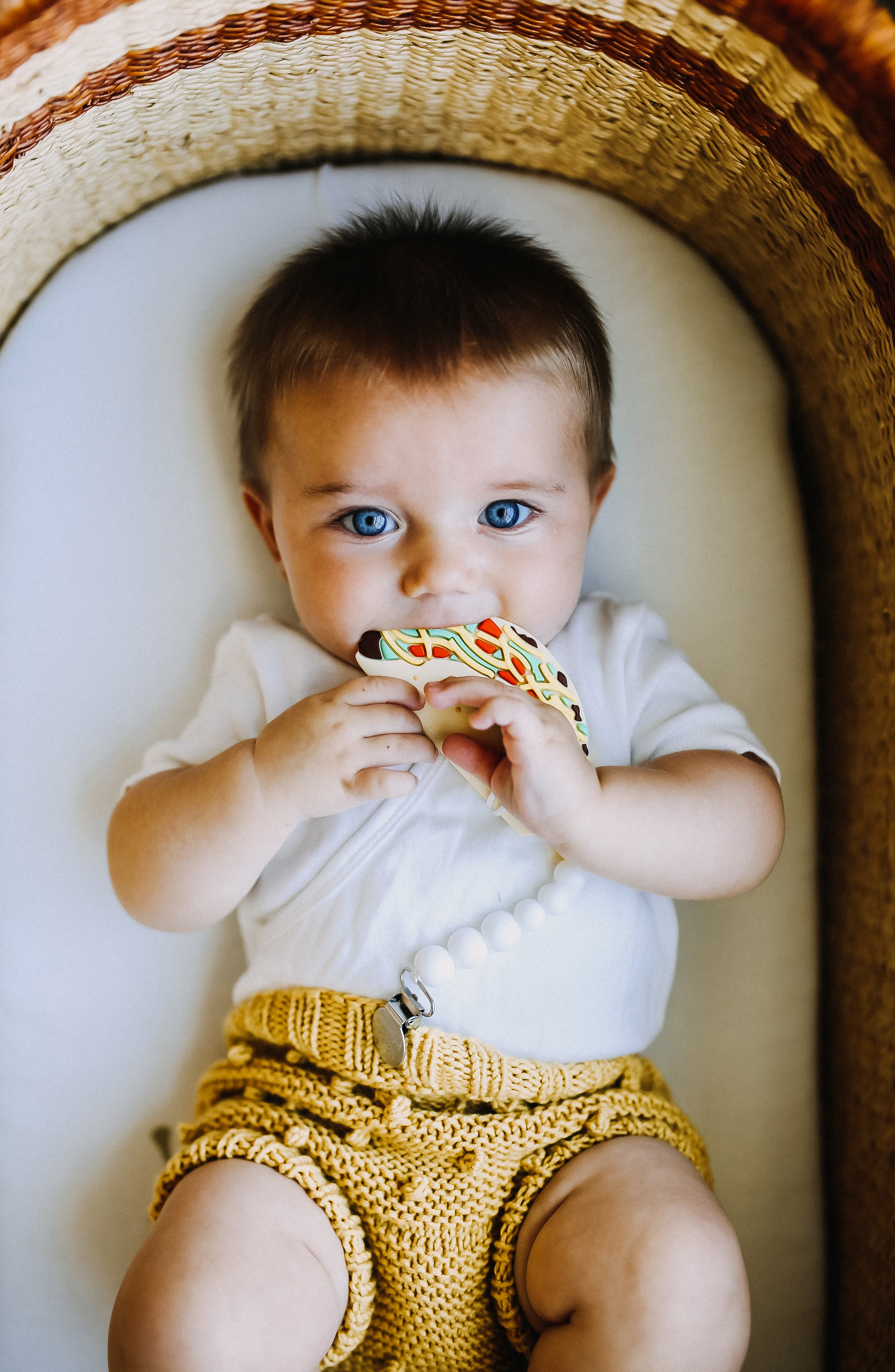 Taco Teething Toy & Holder,                             Alternate thumbnail 3, color,                             MULTI