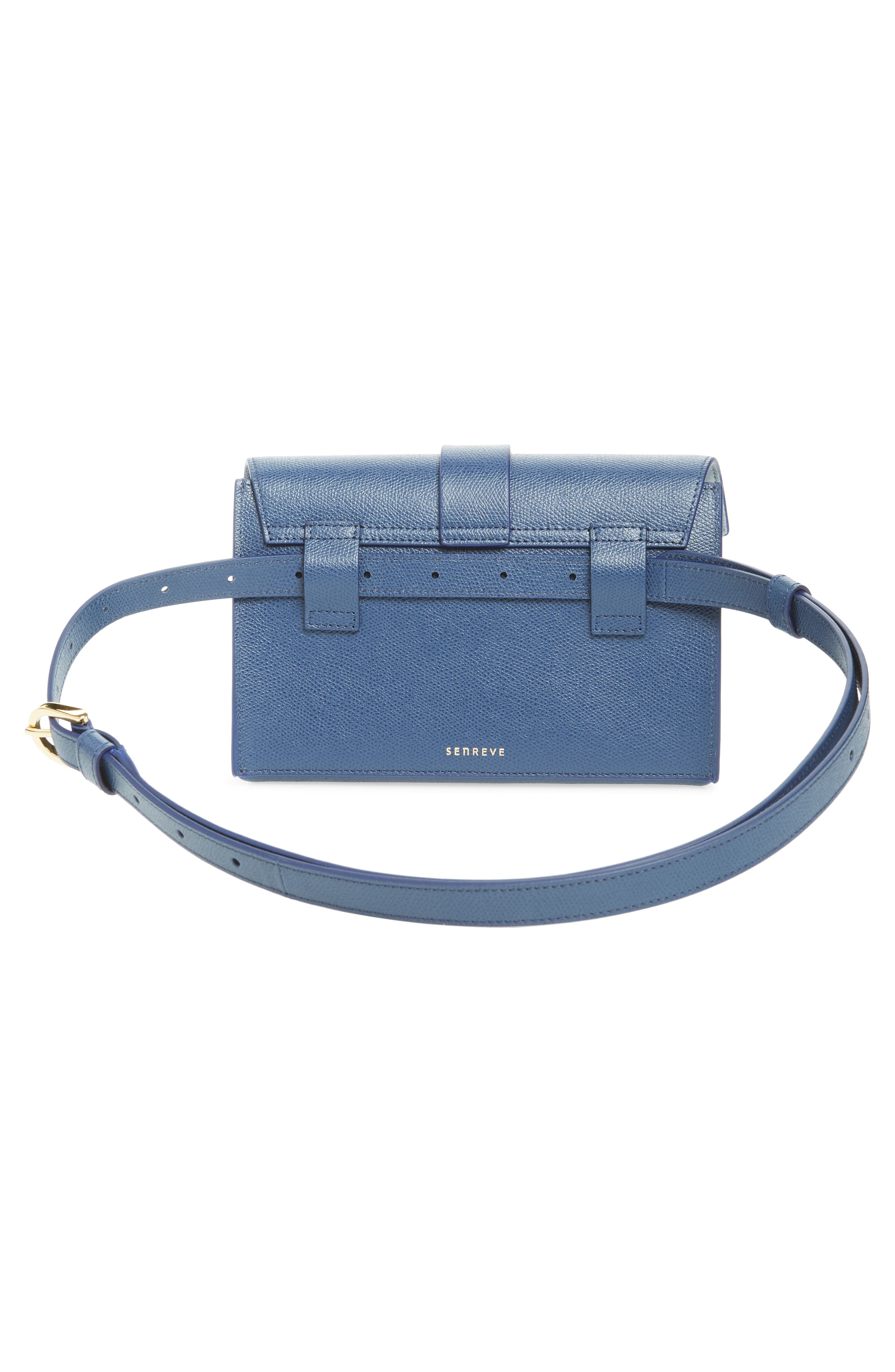 Aria Pebbled Leather Belt Bag,                             Alternate thumbnail 4, color,                             400
