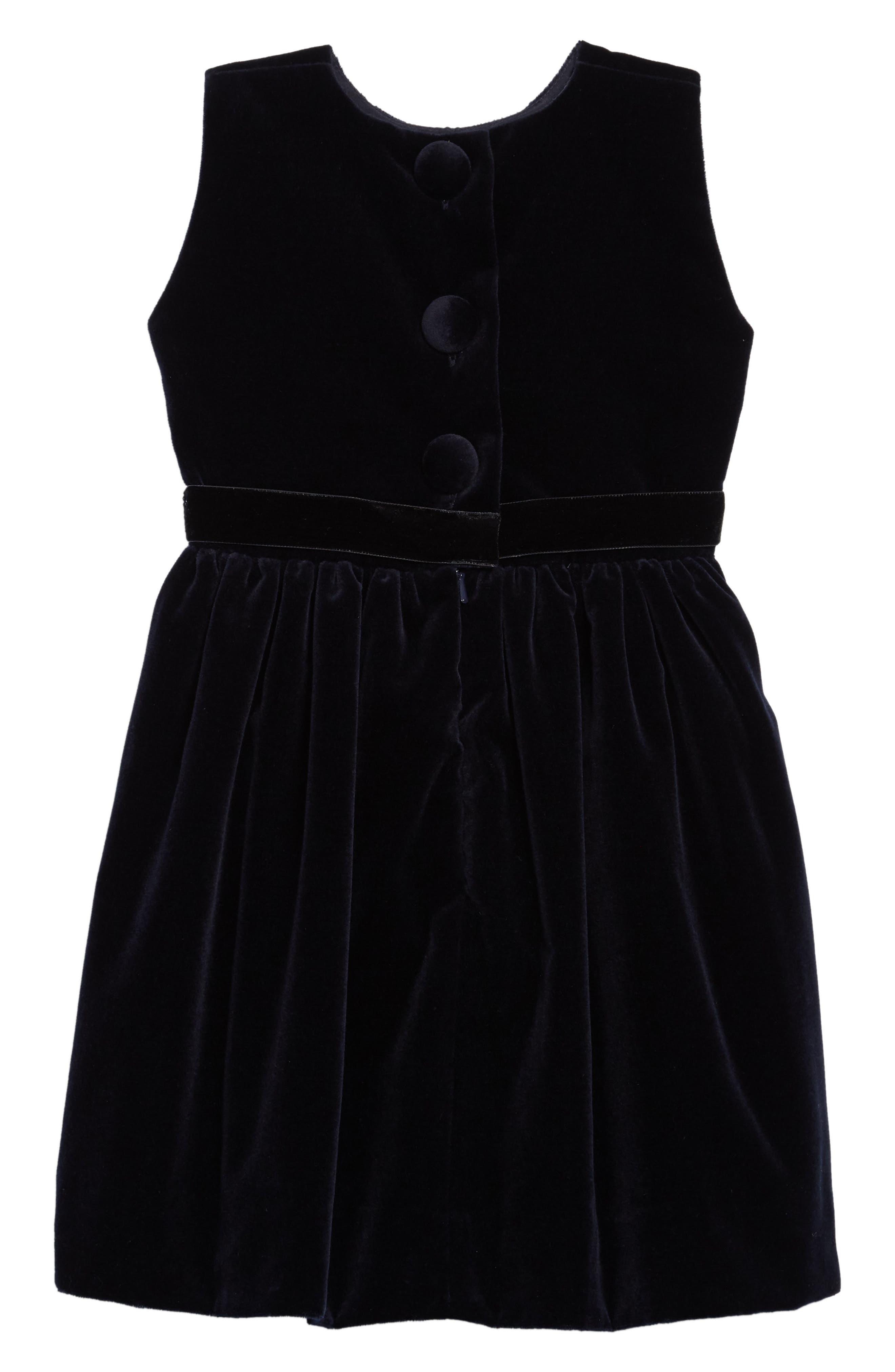 Belted Velvet Dress,                             Alternate thumbnail 2, color,                             NAVY