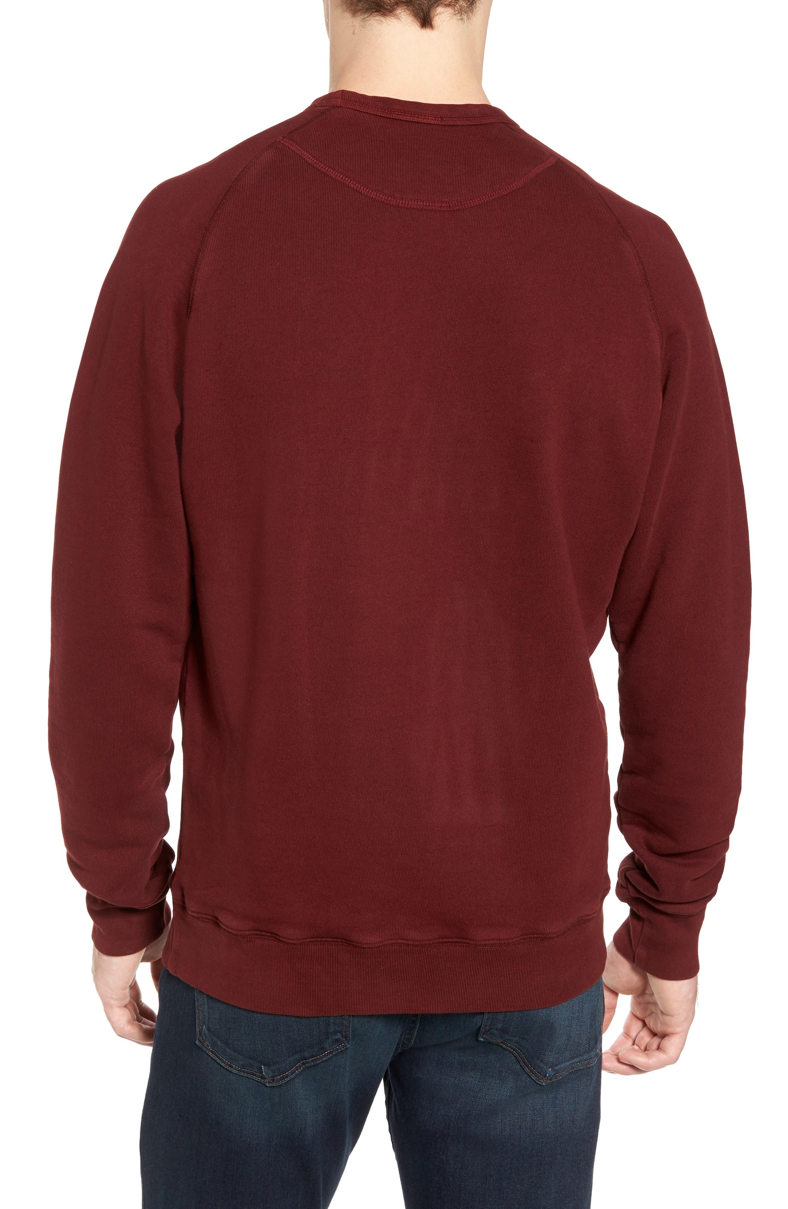 South Sea Raglan Sweatshirt,                             Alternate thumbnail 6, color,