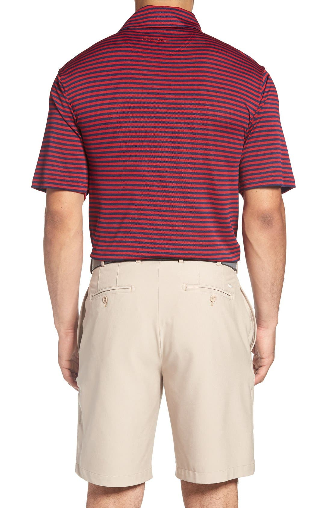 XH2O Feed Stripe Stretch Golf Polo,                             Alternate thumbnail 35, color,