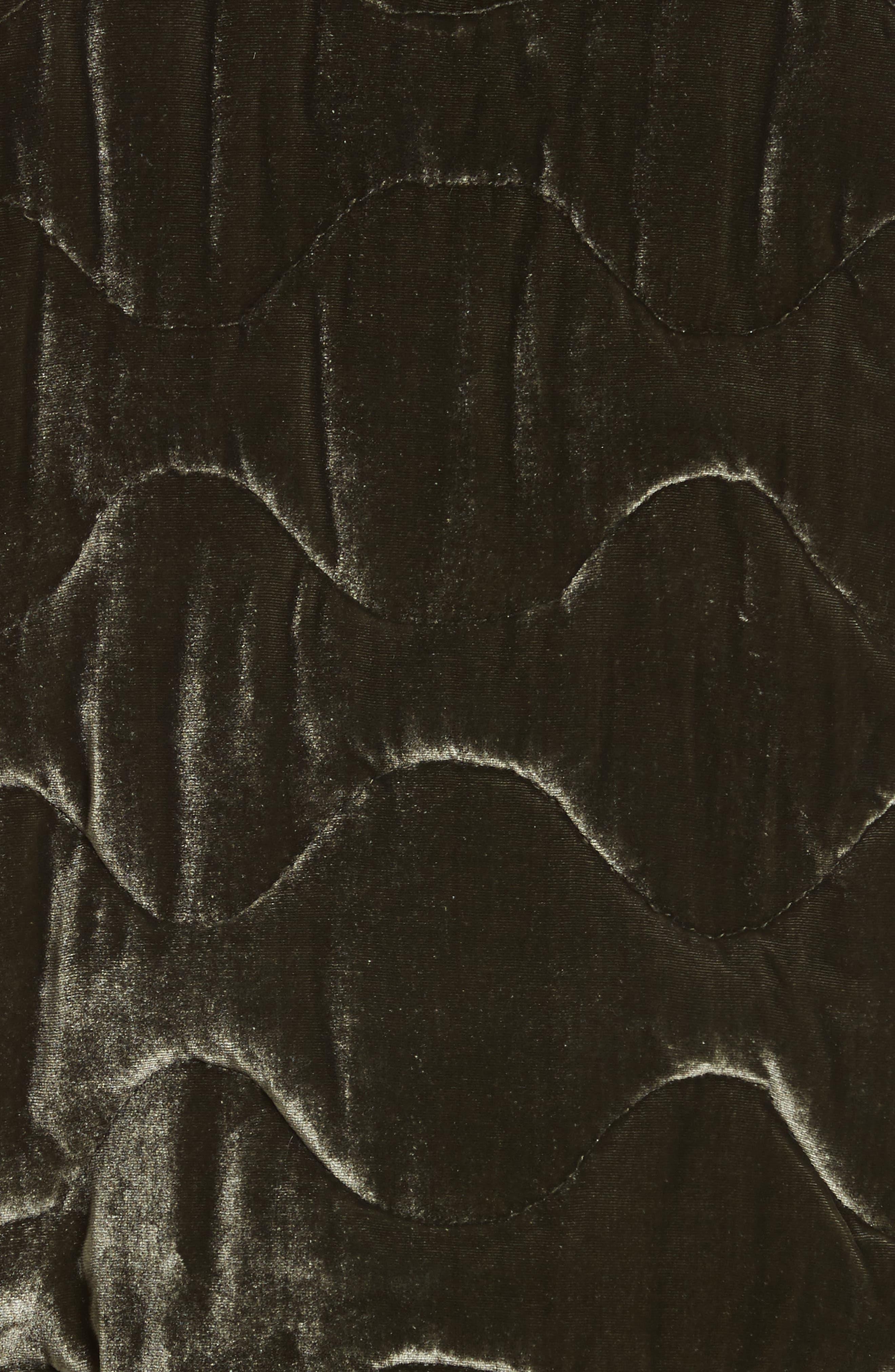 Quilted Velvet Jacket,                             Alternate thumbnail 6, color,                             301