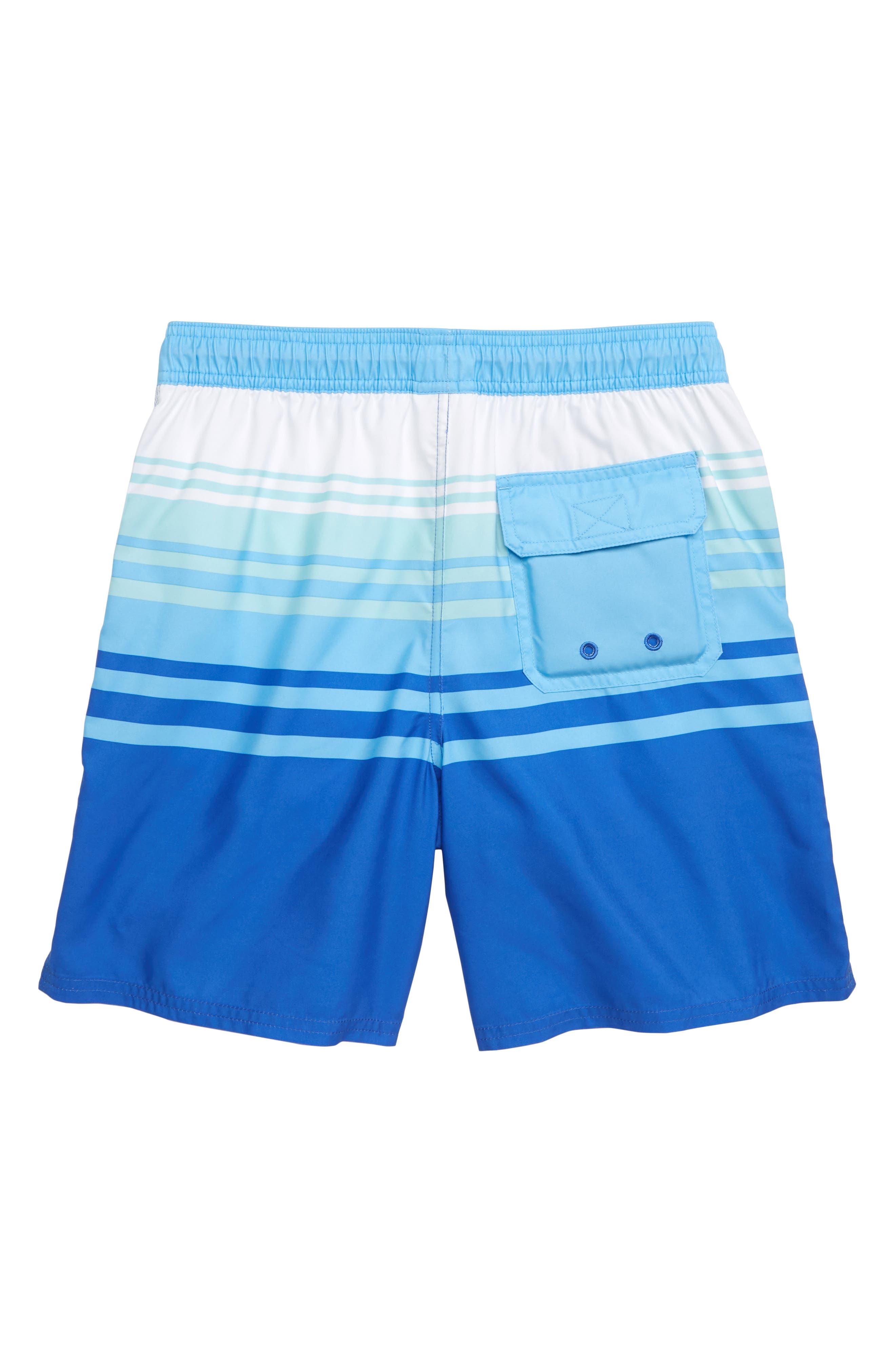 Dusk Stripe Chappy Swim Trunks,                             Alternate thumbnail 2, color,                             500