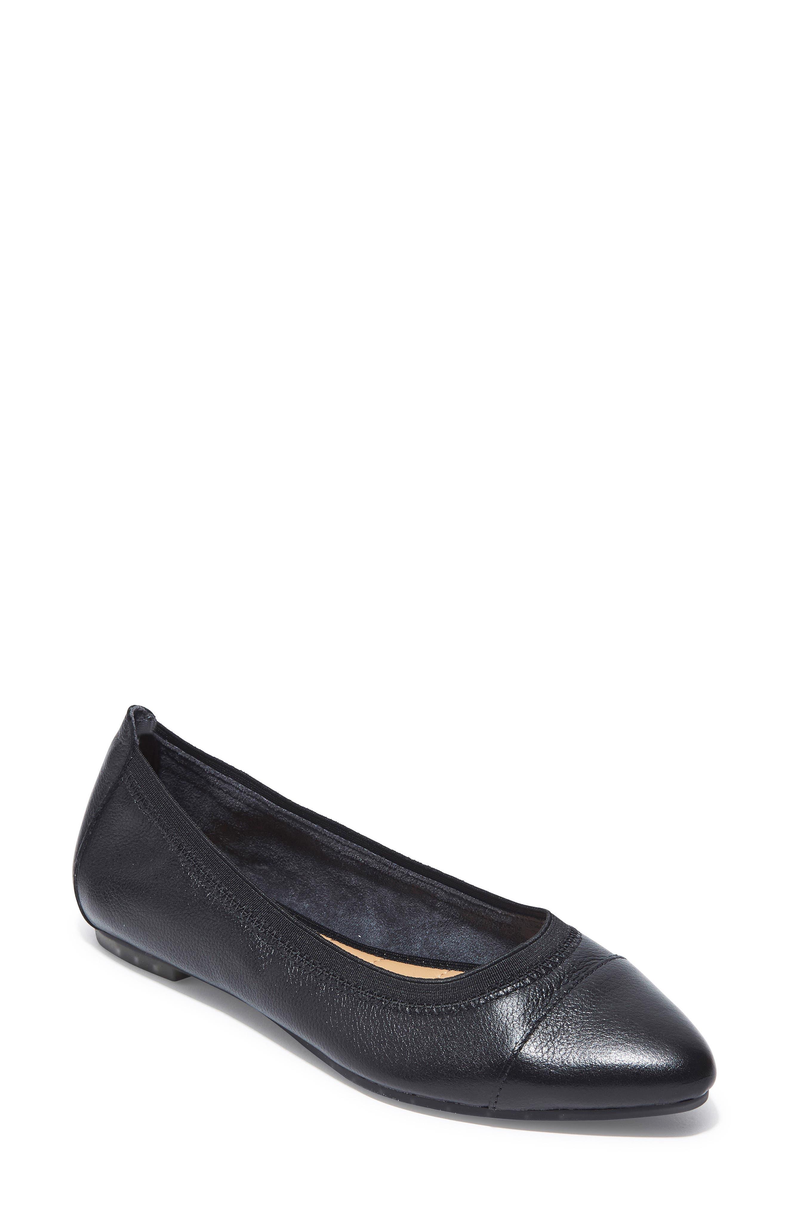 Arianna Pointy Toe Flat,                             Main thumbnail 1, color,                             002