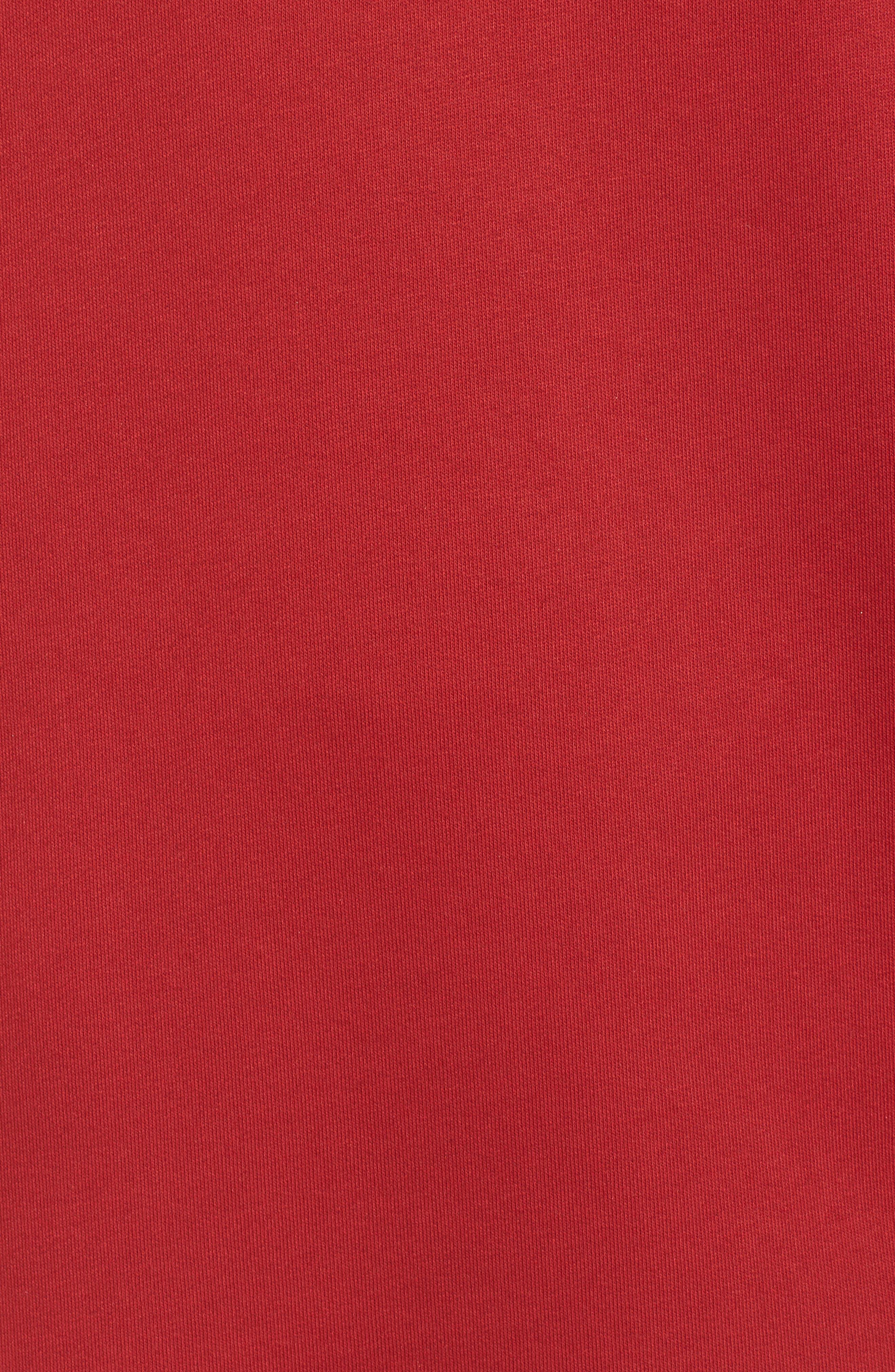 Oversize Velvet Logo Hoodie Dress,                             Alternate thumbnail 6, color,                             600