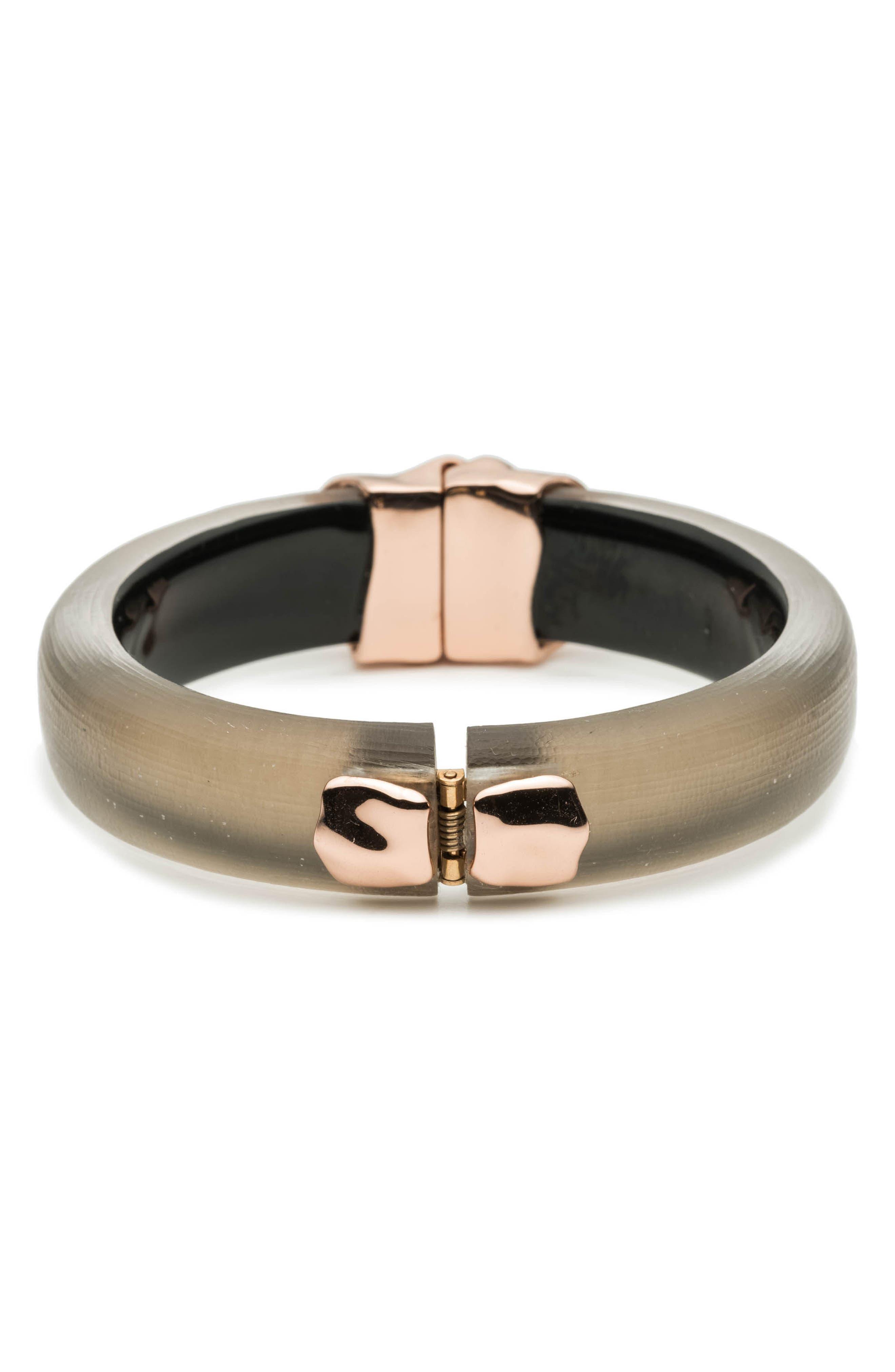 Metal Lucite<sup>®</sup> Hinge Bracelet,                             Alternate thumbnail 2, color,                             WARM GREY