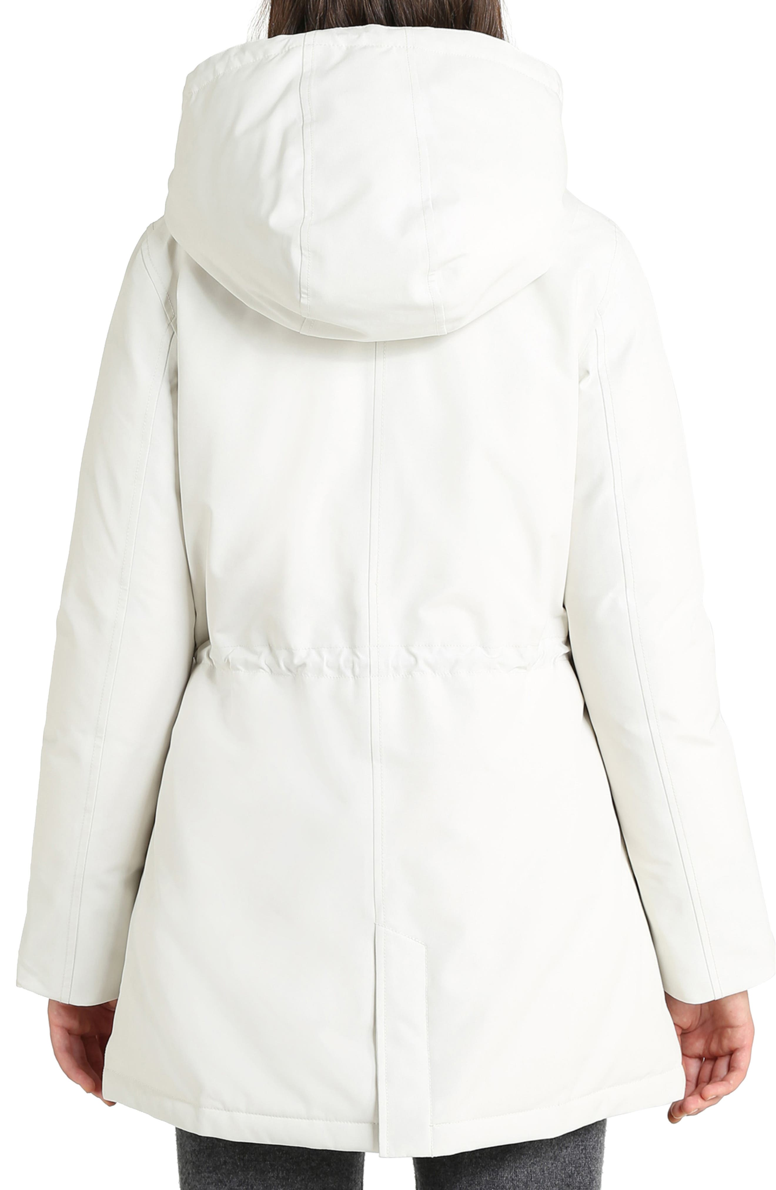 Mountain Gore-Tex<sup>®</sup> Hooded Down Parka,                             Alternate thumbnail 2, color,                             WHITE IGLOO