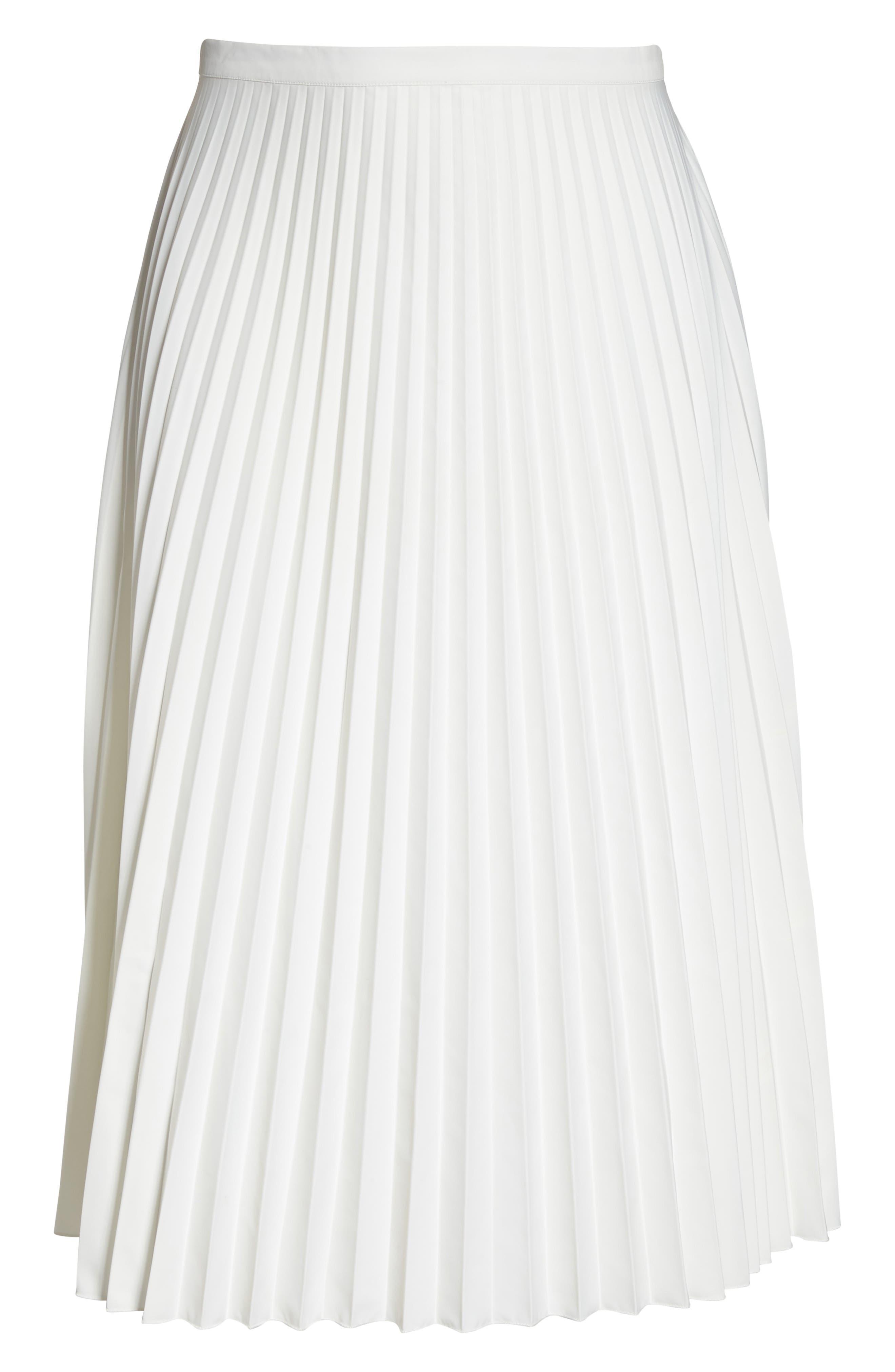 Pleated Long Skirt,                             Alternate thumbnail 6, color,                             100