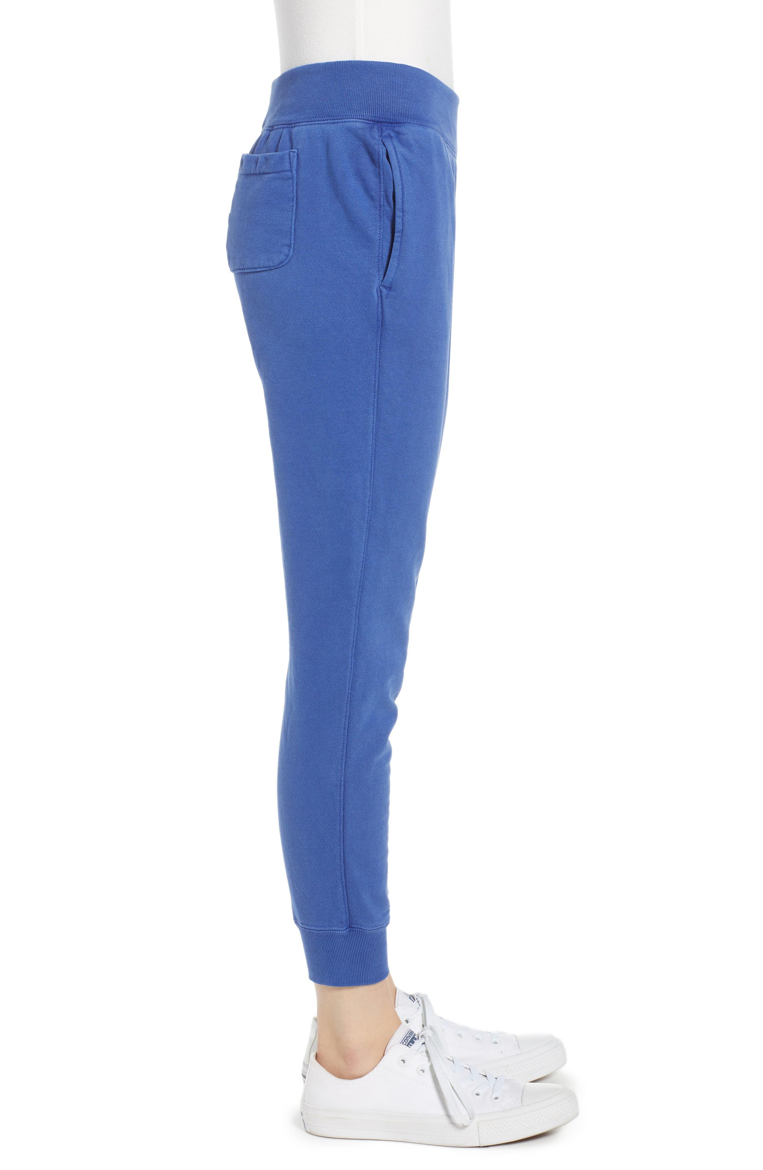 Garment Dyed Jogger Pants,                             Alternate thumbnail 3, color,                             SURF THE WEB