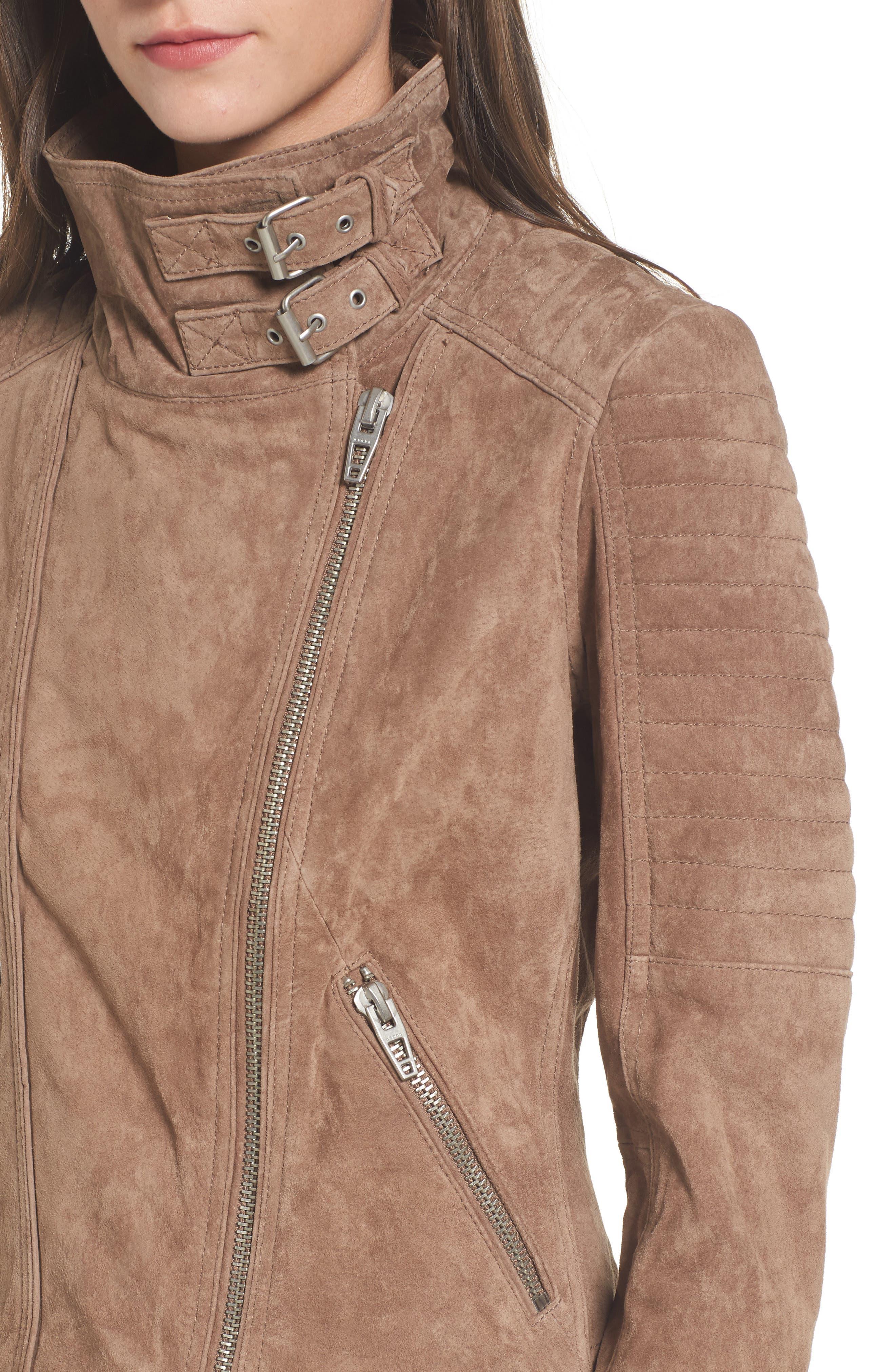 Crop Suede Moto Jacket,                             Alternate thumbnail 4, color,                             250