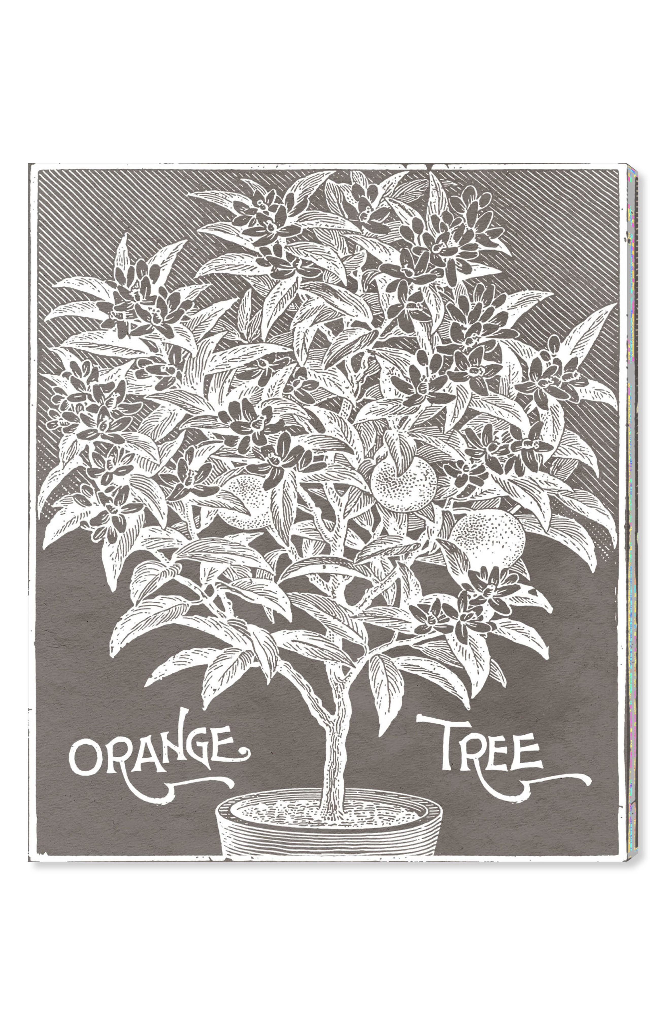 Orange Tree Canvas Wall Art,                             Main thumbnail 1, color,                             GREY