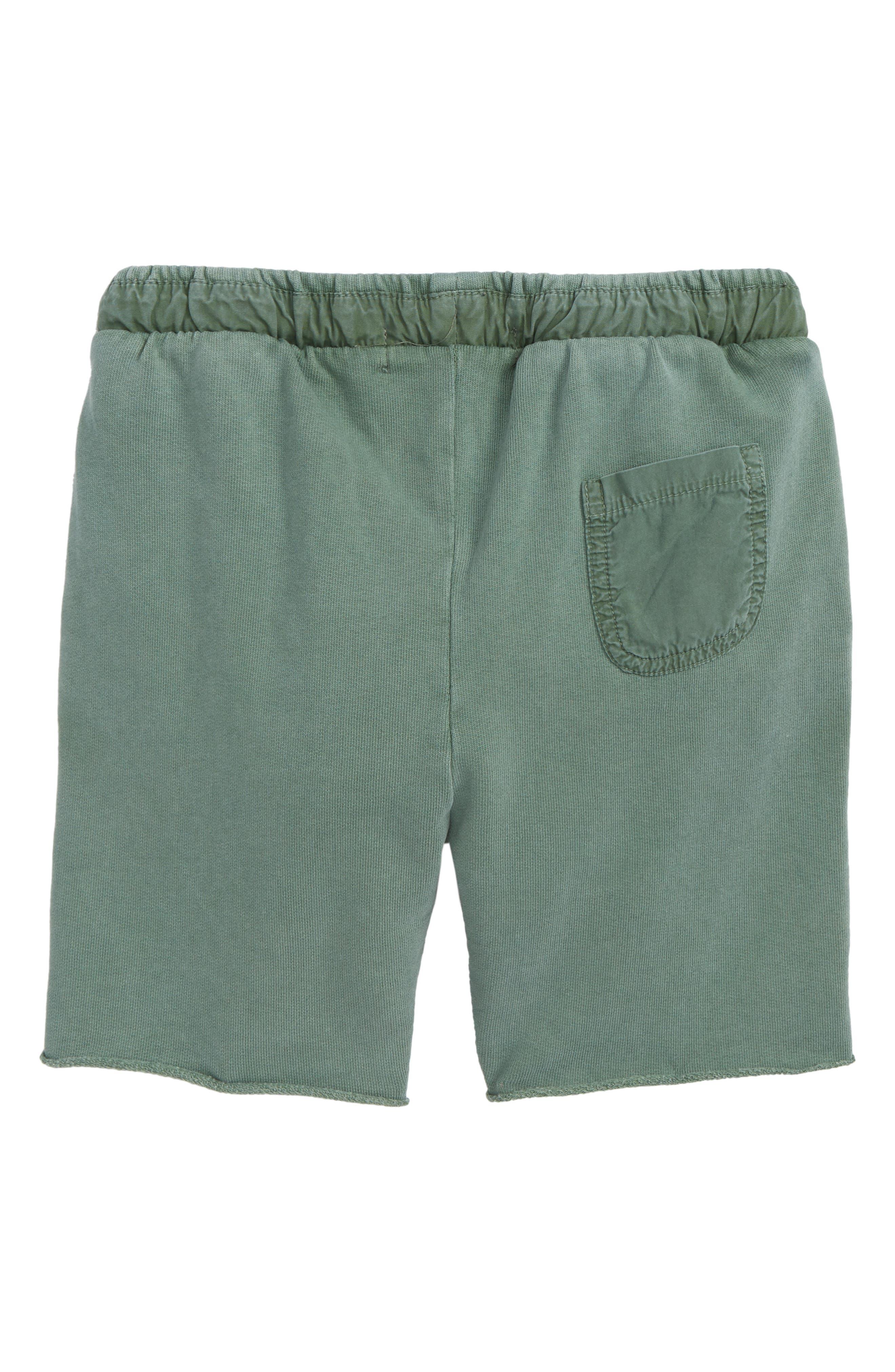 Kids Cullen Organic Cotton Shorts,                             Alternate thumbnail 2, color,                             370