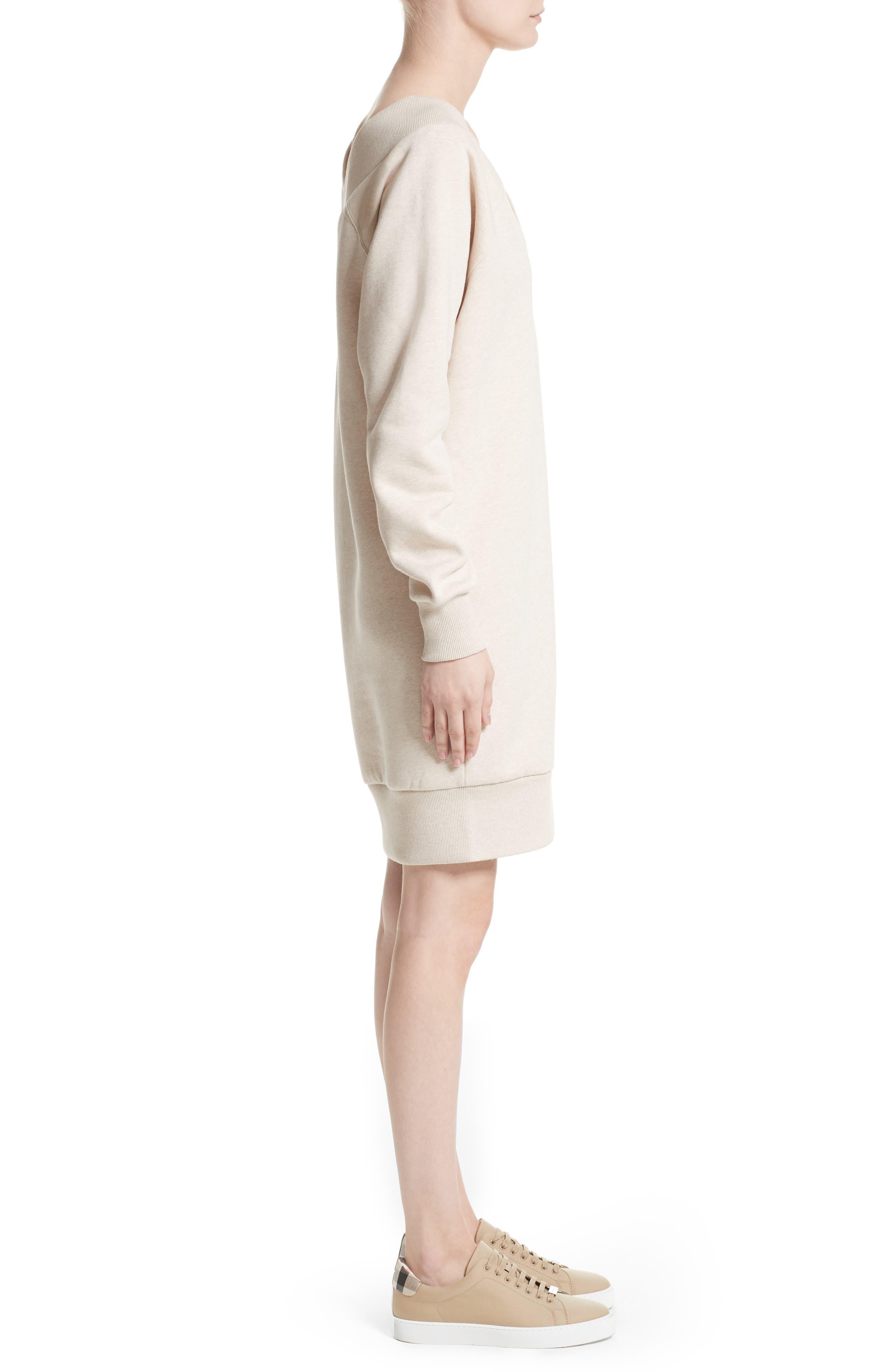 Taro Sweatshirt Dress,                             Alternate thumbnail 3, color,                             250