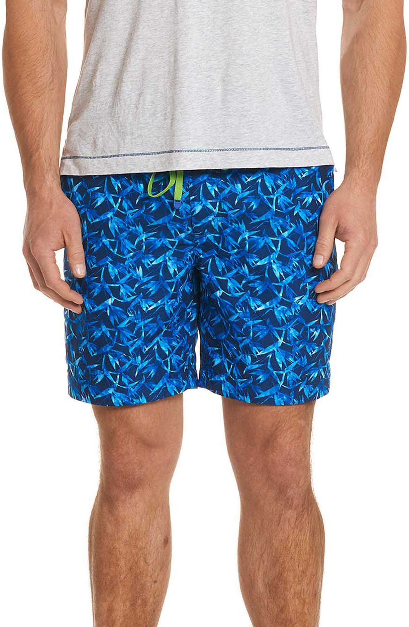 Santa Maria Classic Fit Swim Trunks,                         Main,                         color, BLUE