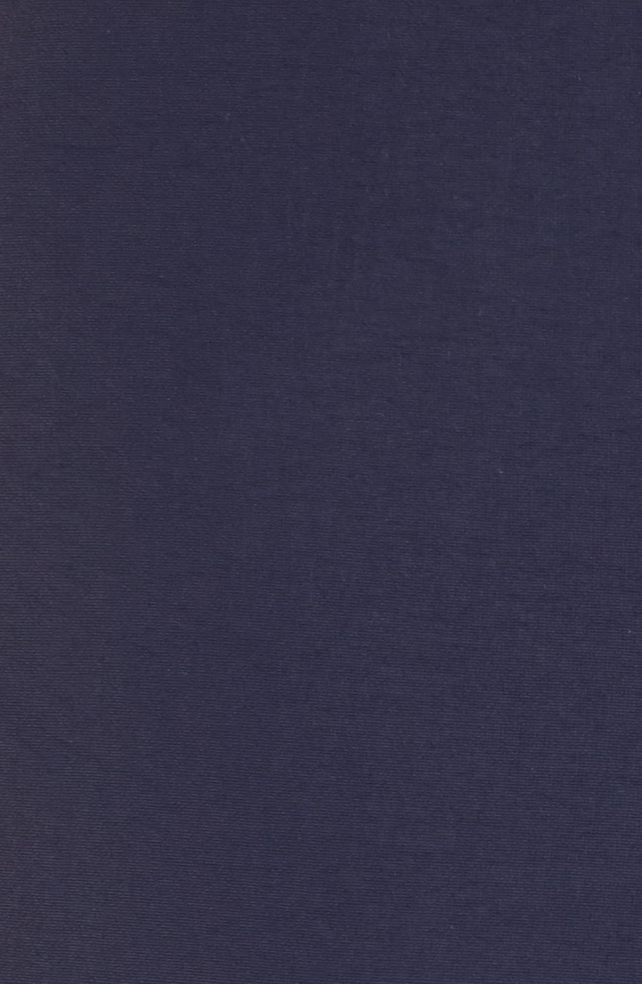 Aruba Tailored Fit French Stripe Swim Trunks,                             Alternate thumbnail 10, color,