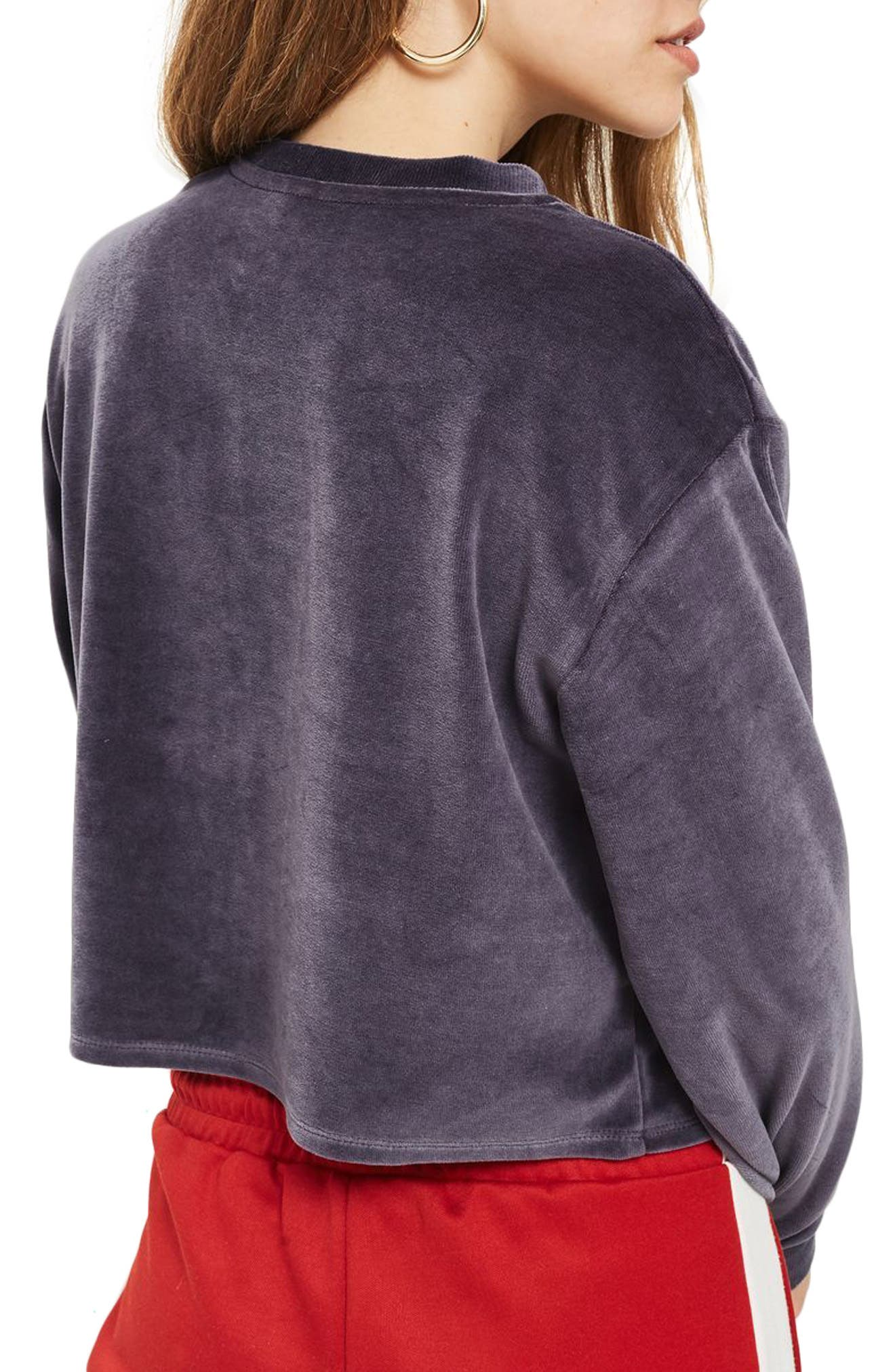 Embroidered Velour Crop Sweater,                             Alternate thumbnail 2, color,                             410