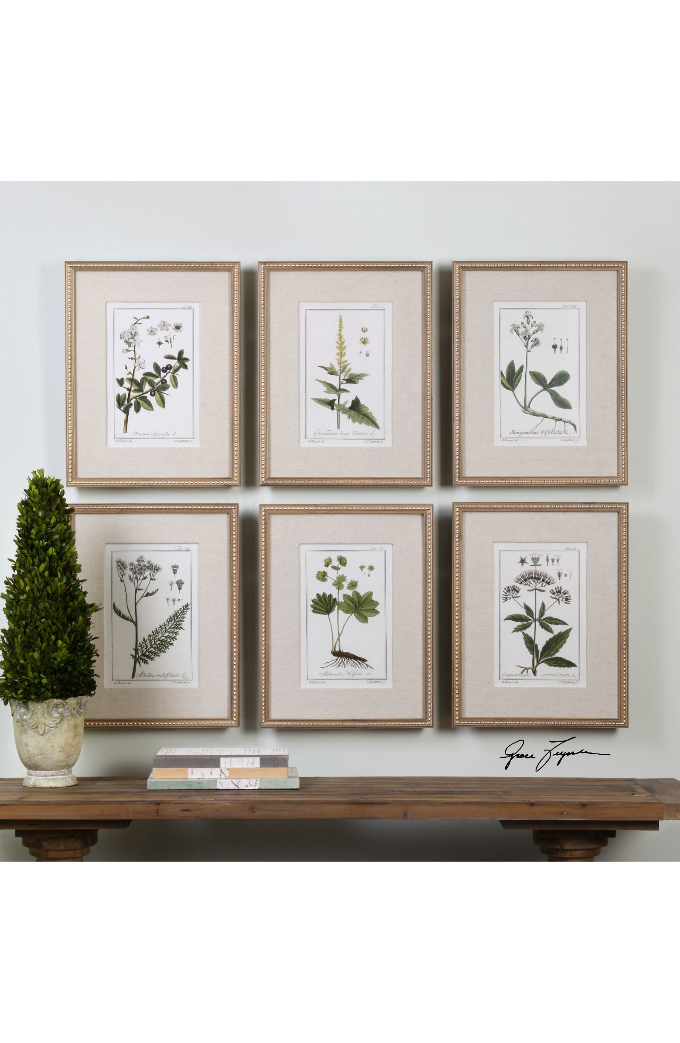 Floral Botanical Set of 6 Art Prints,                             Alternate thumbnail 2, color,                             200