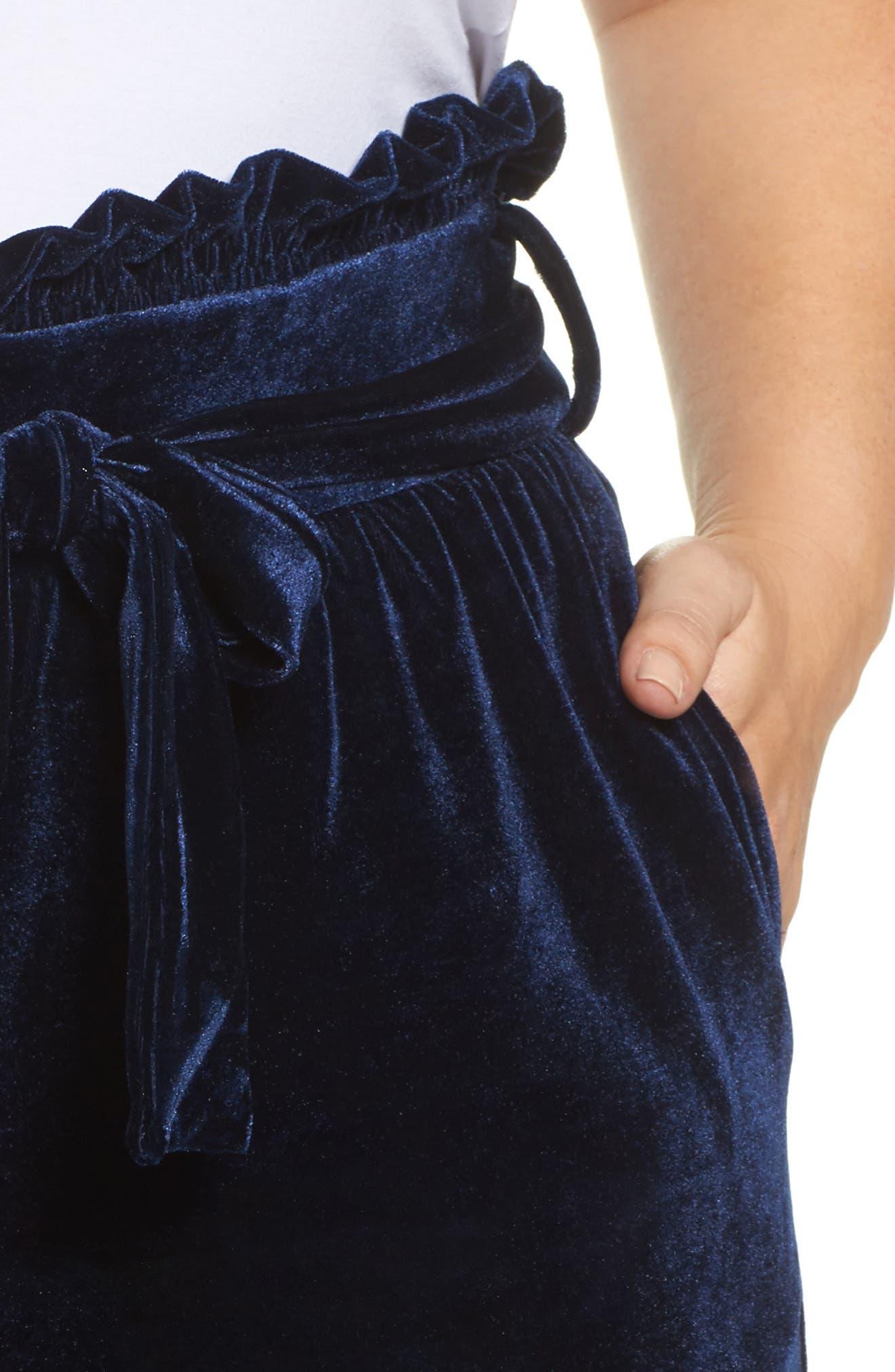 Wide Leg Velvet Pants,                             Alternate thumbnail 4, color,                             401