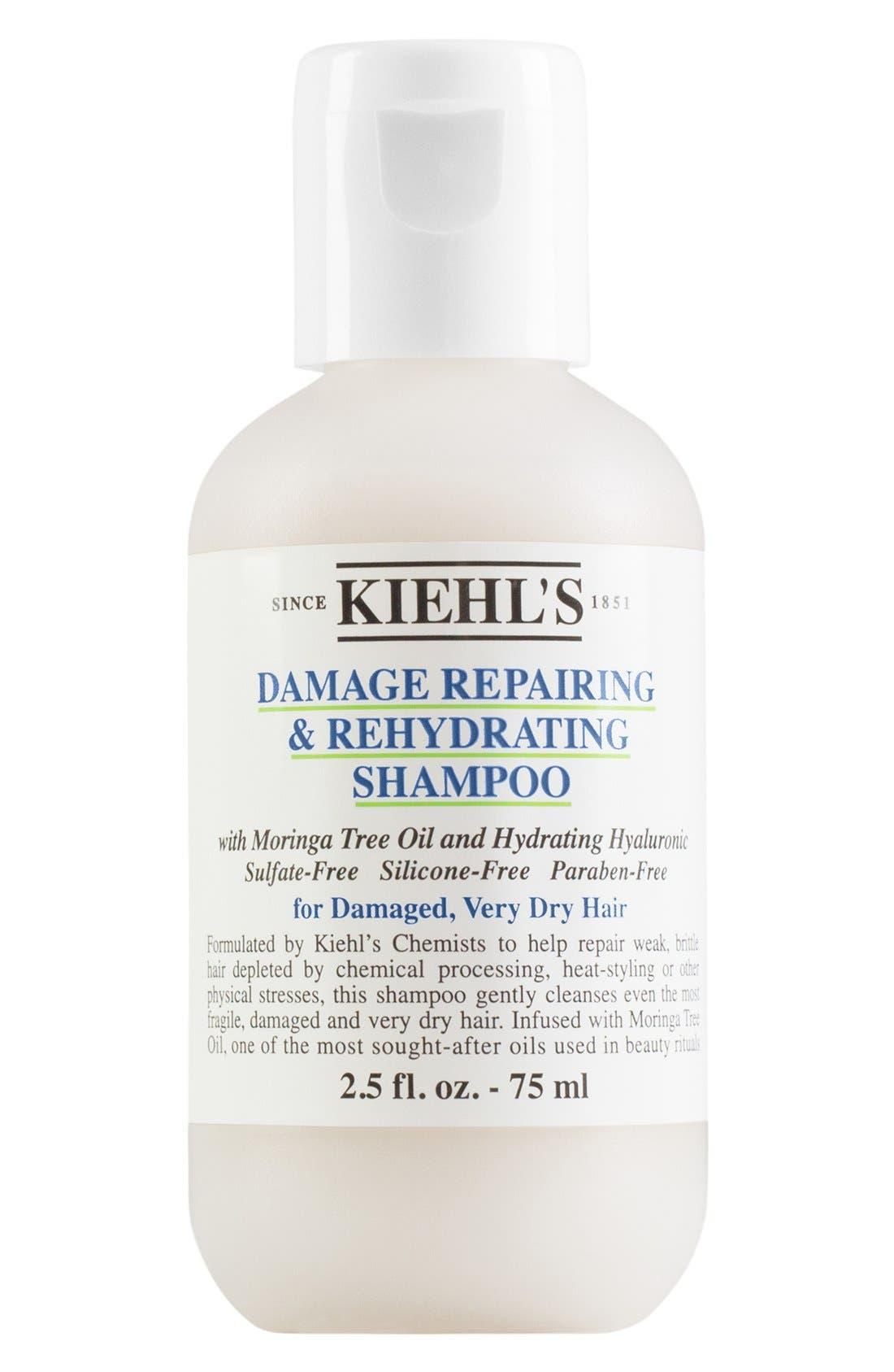 Damage Repairing & Rehydrating Shampoo,                         Main,                         color, NO COLOR