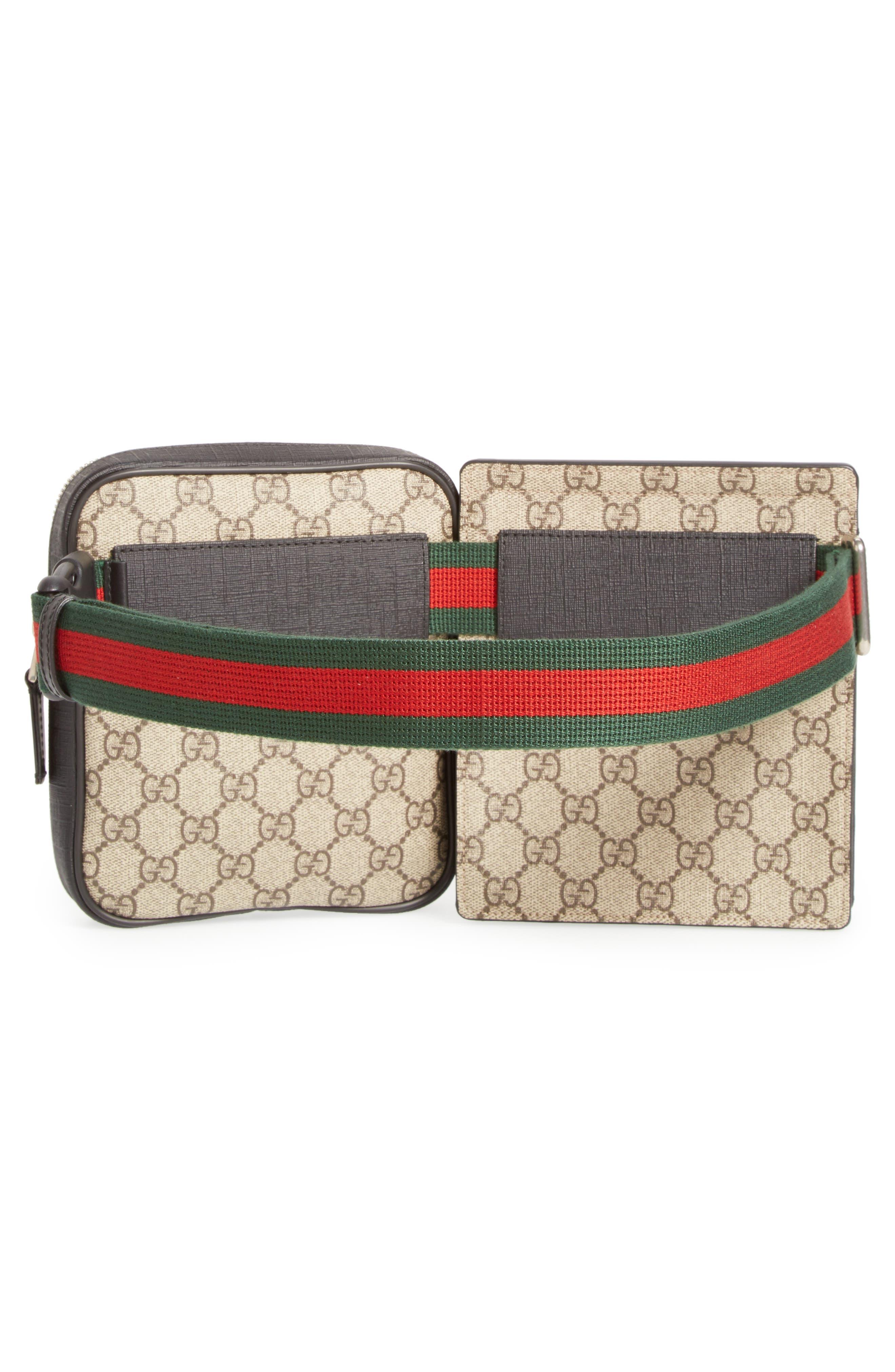 Band Belt Bag,                             Alternate thumbnail 3, color,                             250