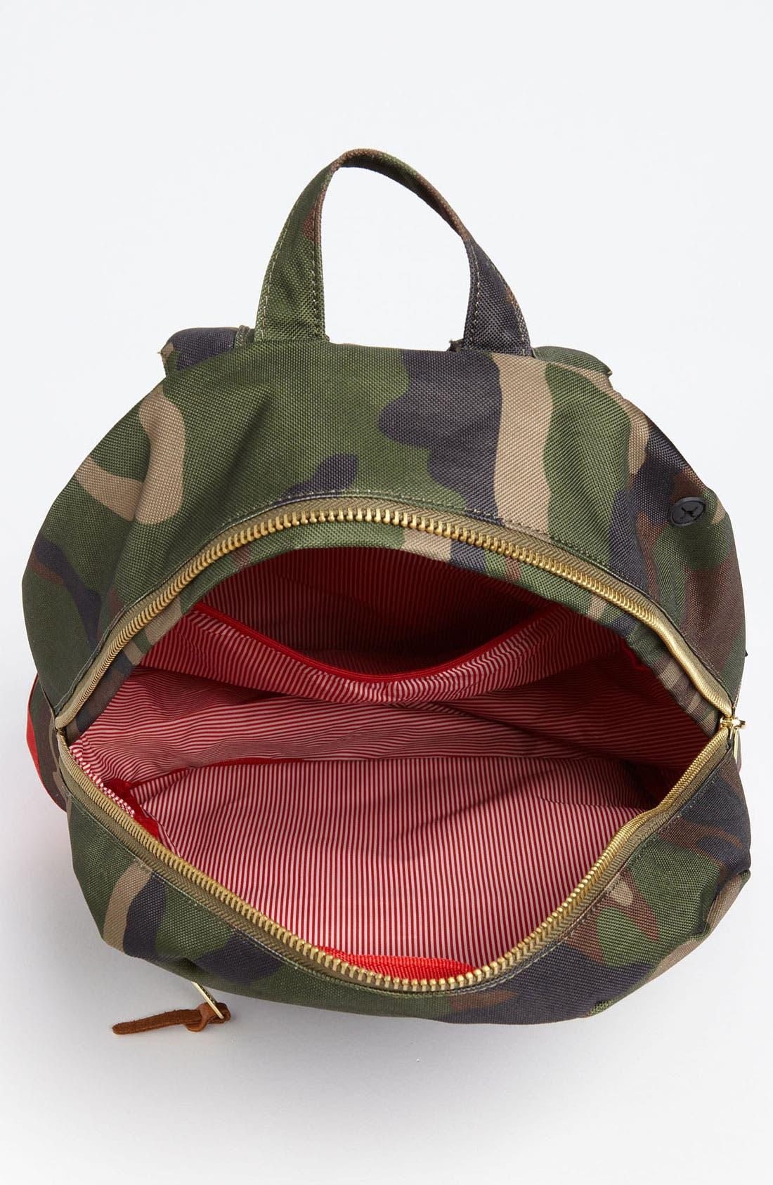 'Settlement' Backpack,                             Alternate thumbnail 15, color,