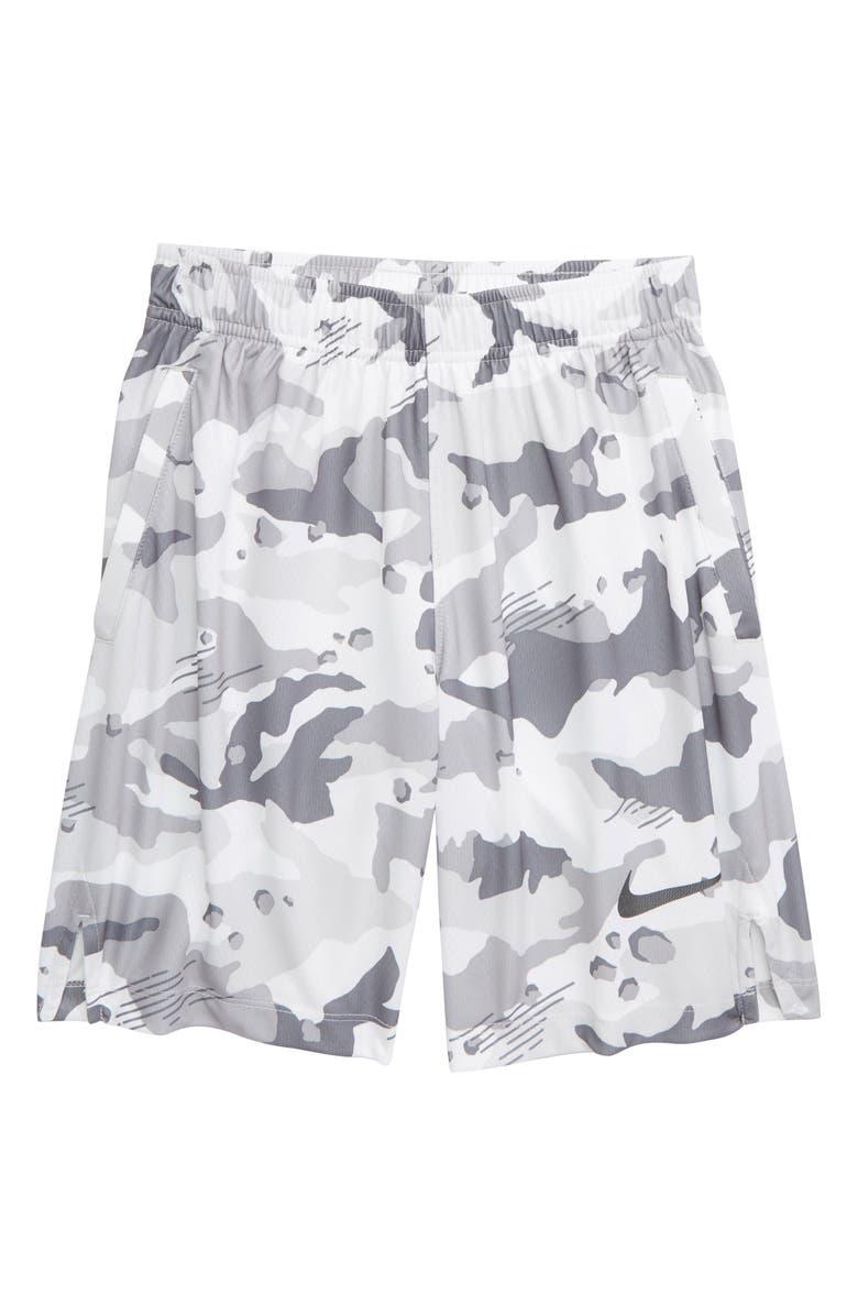c3e835a8ca31 Nike Dry Shorts (Little Boys   Big Boys)