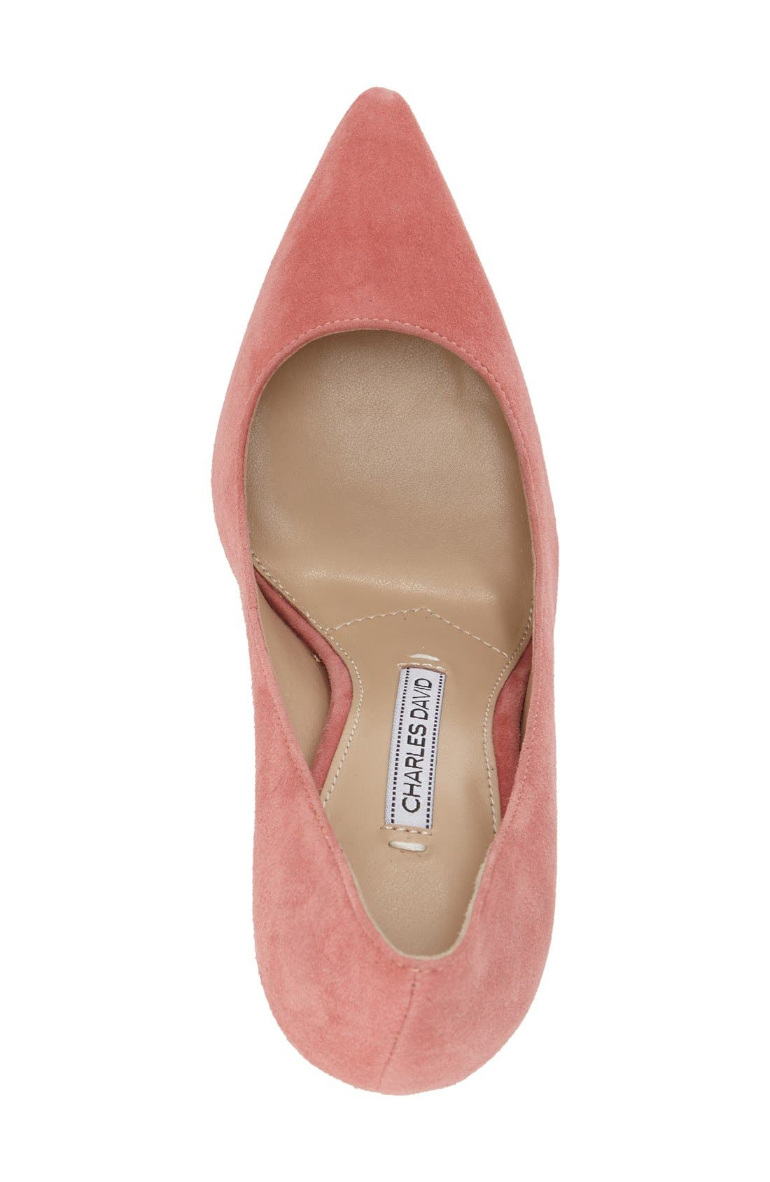 'Caterina' Pointy Toe Pump,                             Alternate thumbnail 20, color,