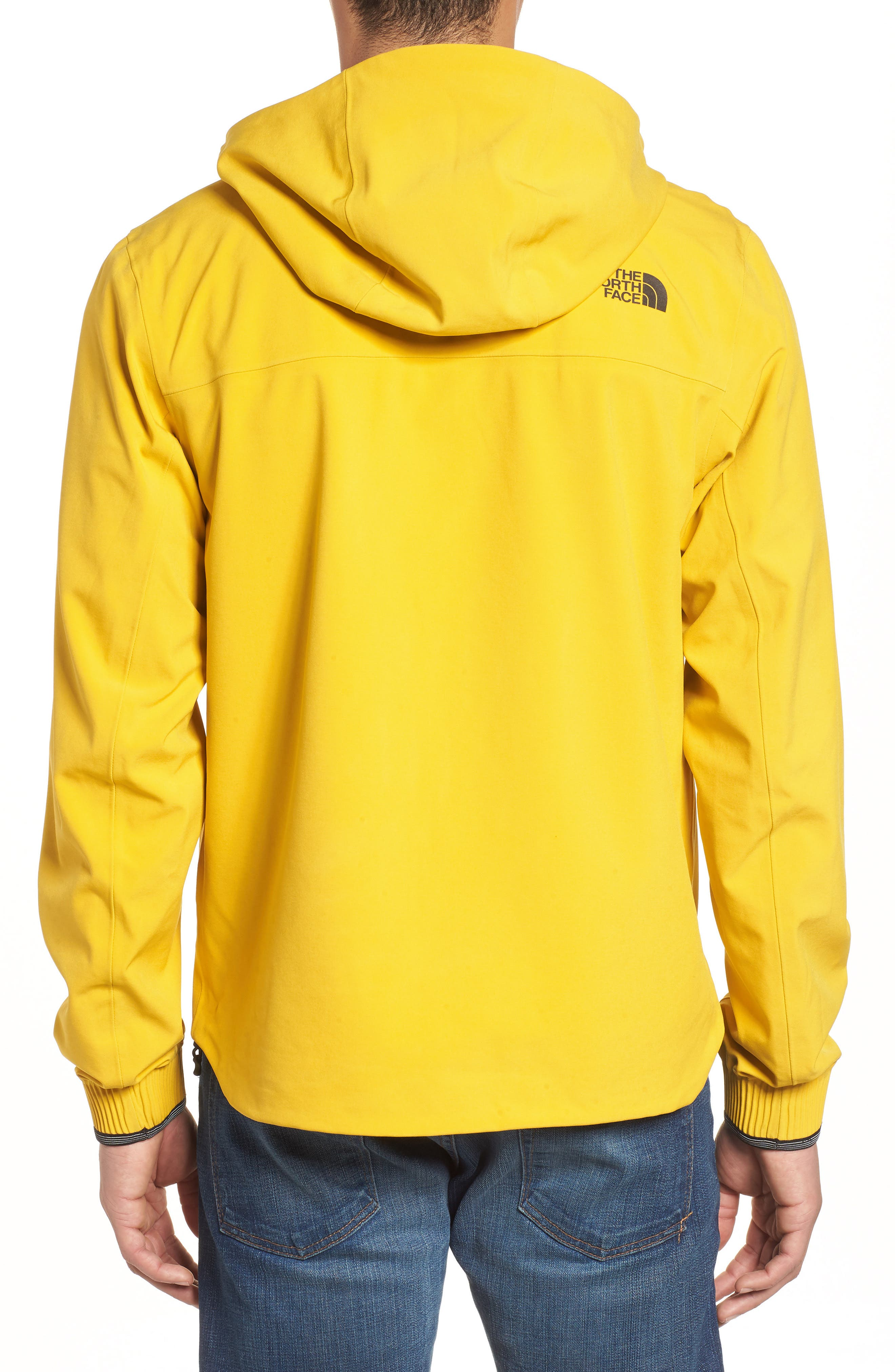 Apex Flex Gore-Tex<sup>®</sup> Waterproof Jacket,                             Alternate thumbnail 8, color,