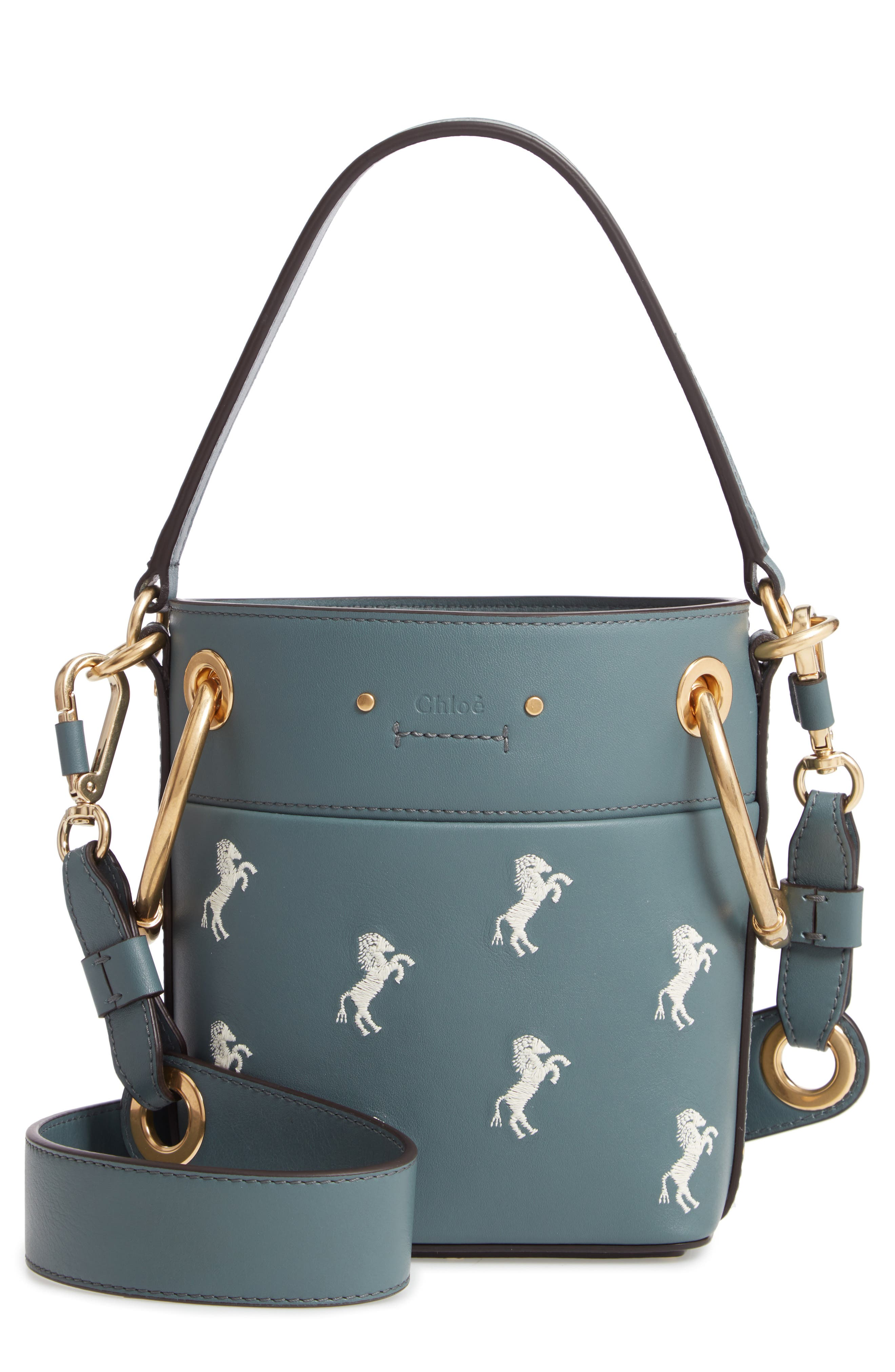 Roy Mini Embroidered Leather Bucket Bag,                         Main,                         color, CLOUDY BLUE