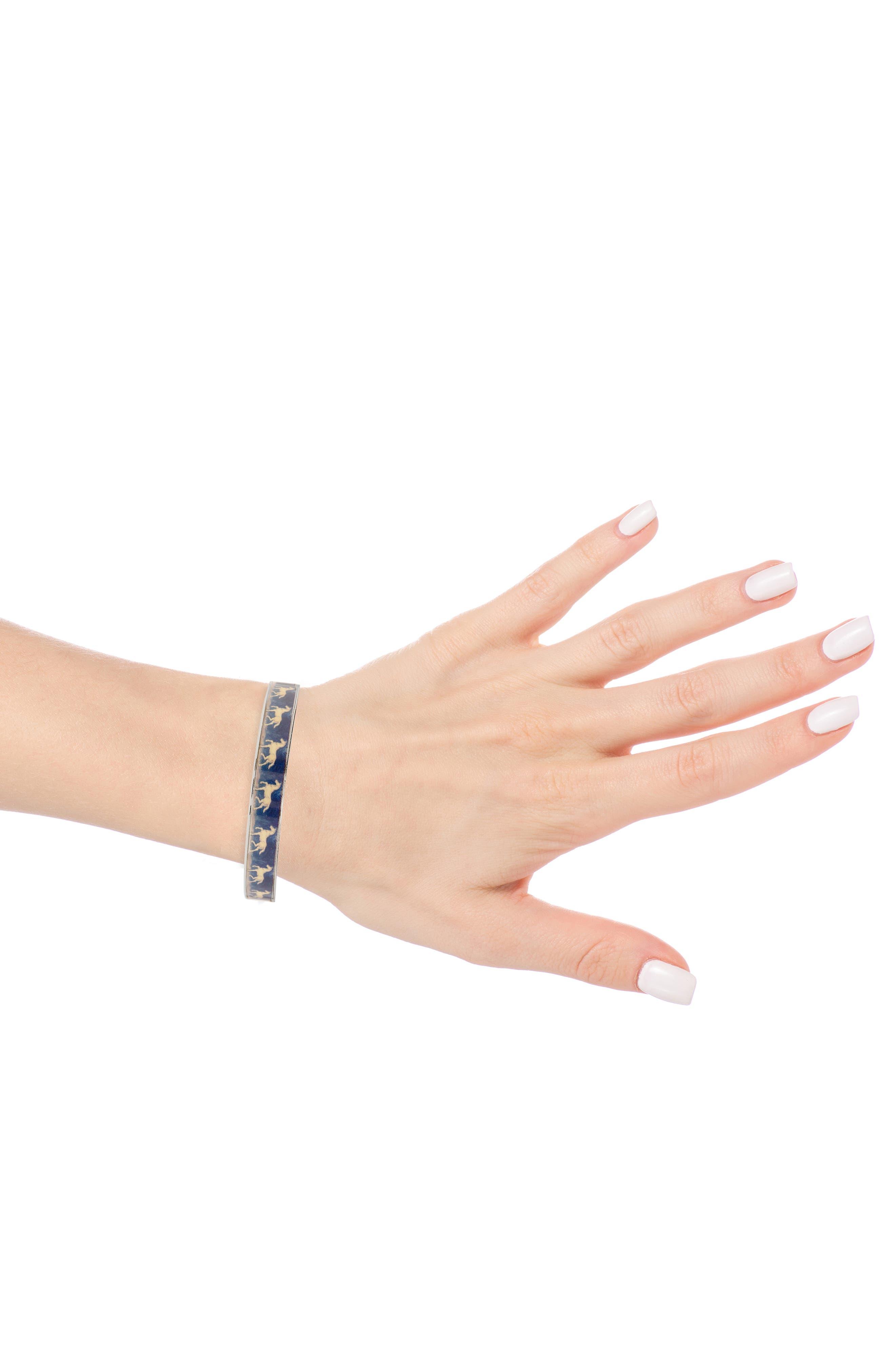 Blue Horse Medium Bracelet,                             Alternate thumbnail 2, color,                             BLUE/ SILVER