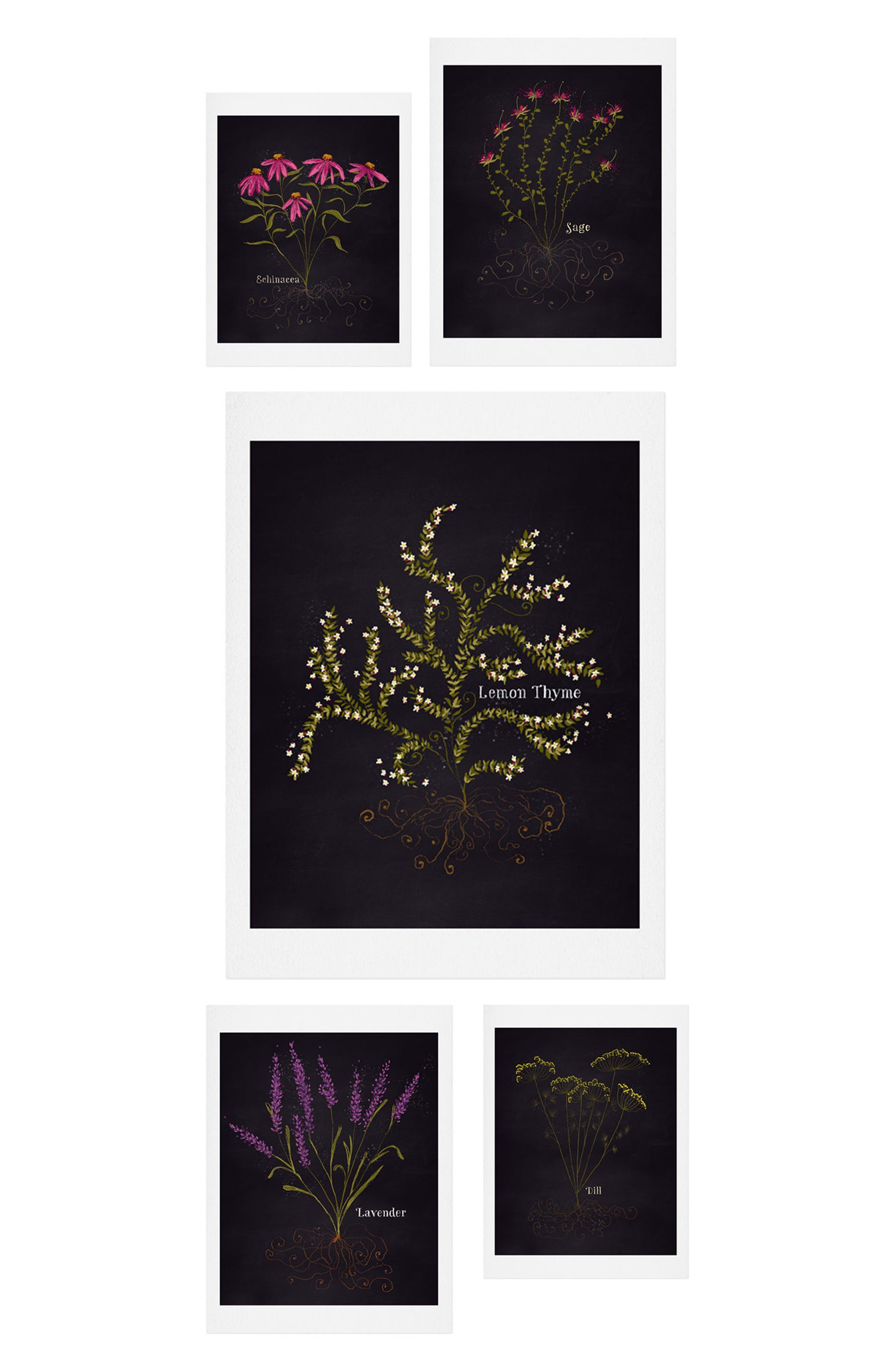 Herb Garden 5-Piece Gallery Wall Art Print Set,                         Main,                         color, BLACK