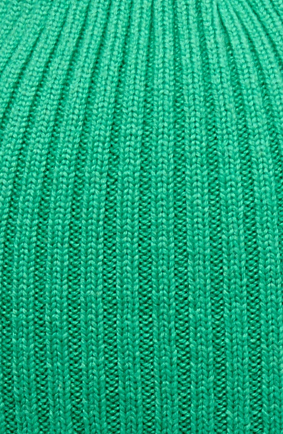 Rib Knit Wool Beanie,                             Alternate thumbnail 16, color,