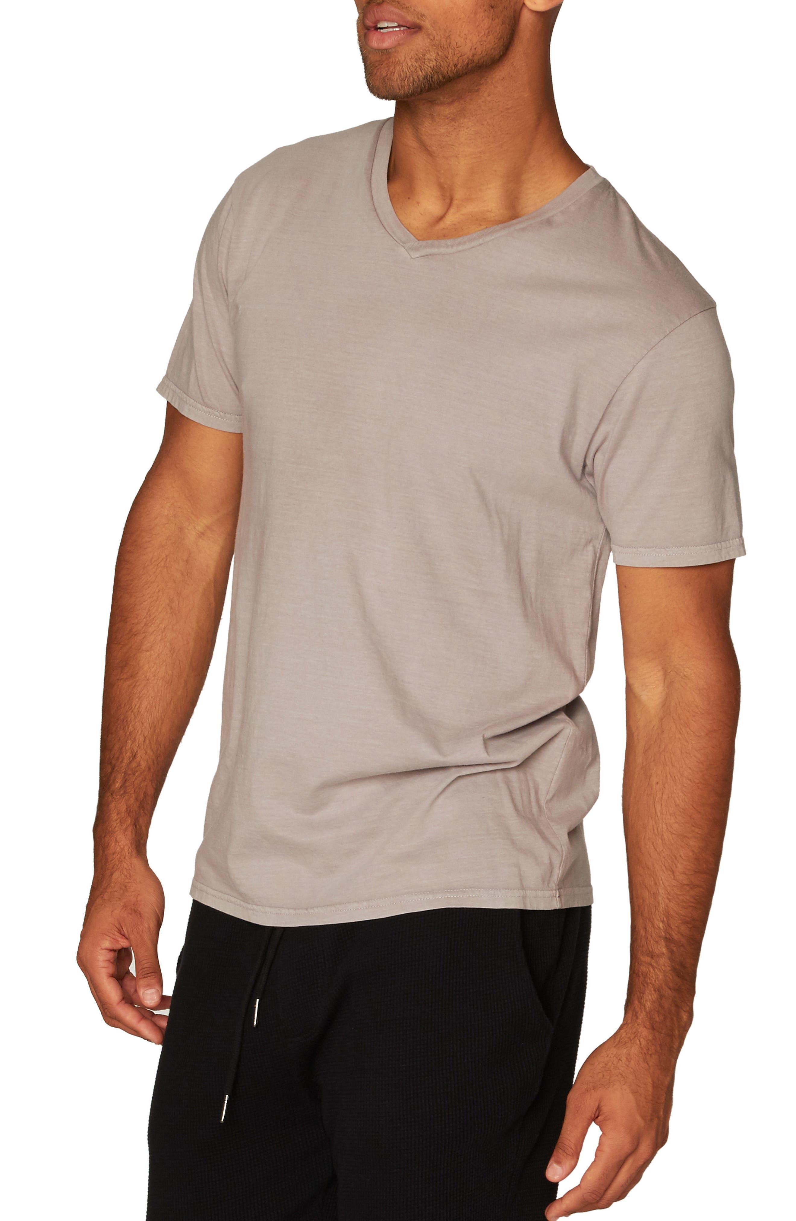 Standard V-Neck T-Shirt,                             Alternate thumbnail 14, color,