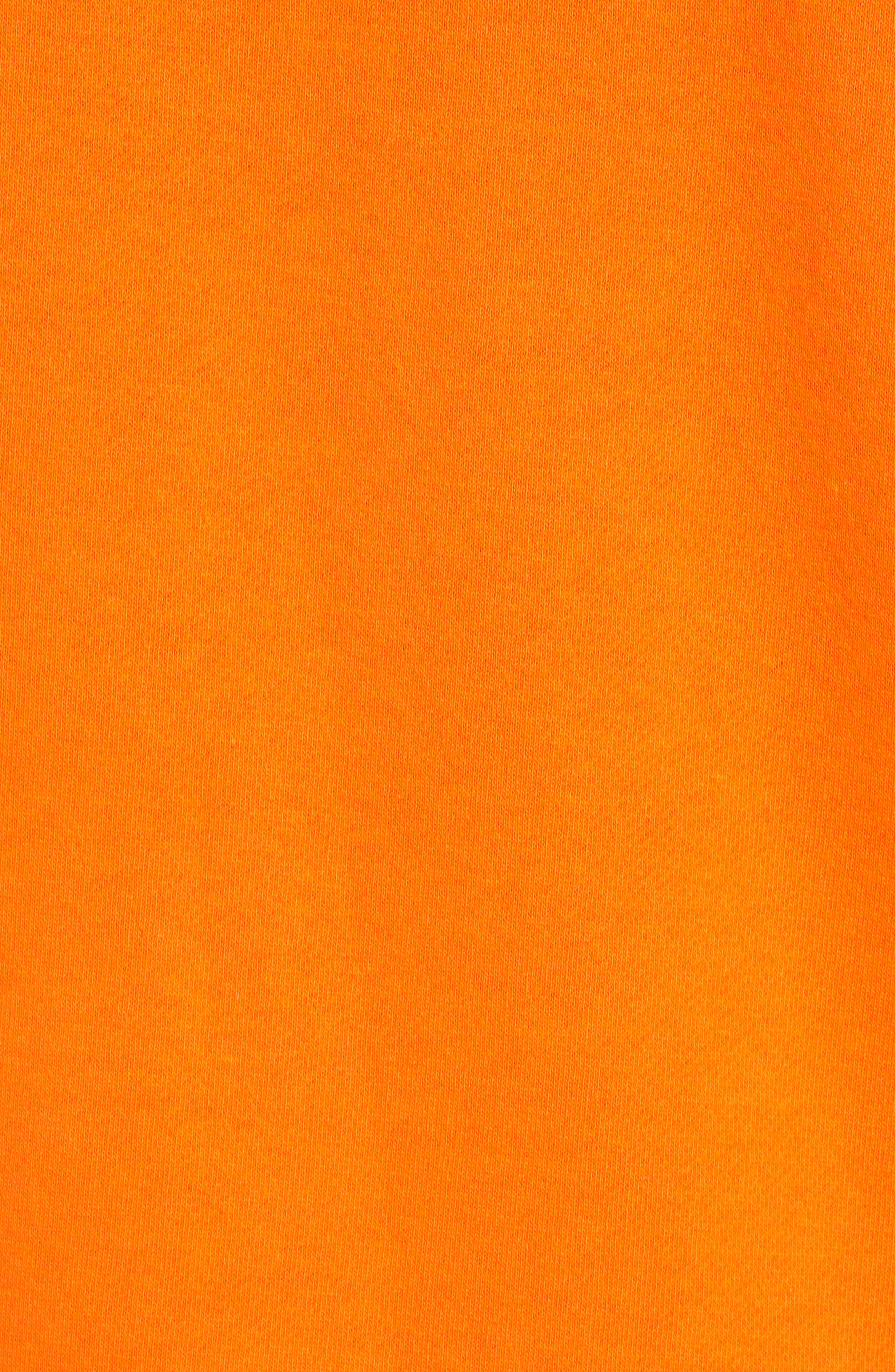 Classic Hoodie Sweatshirt,                             Alternate thumbnail 5, color,                             800
