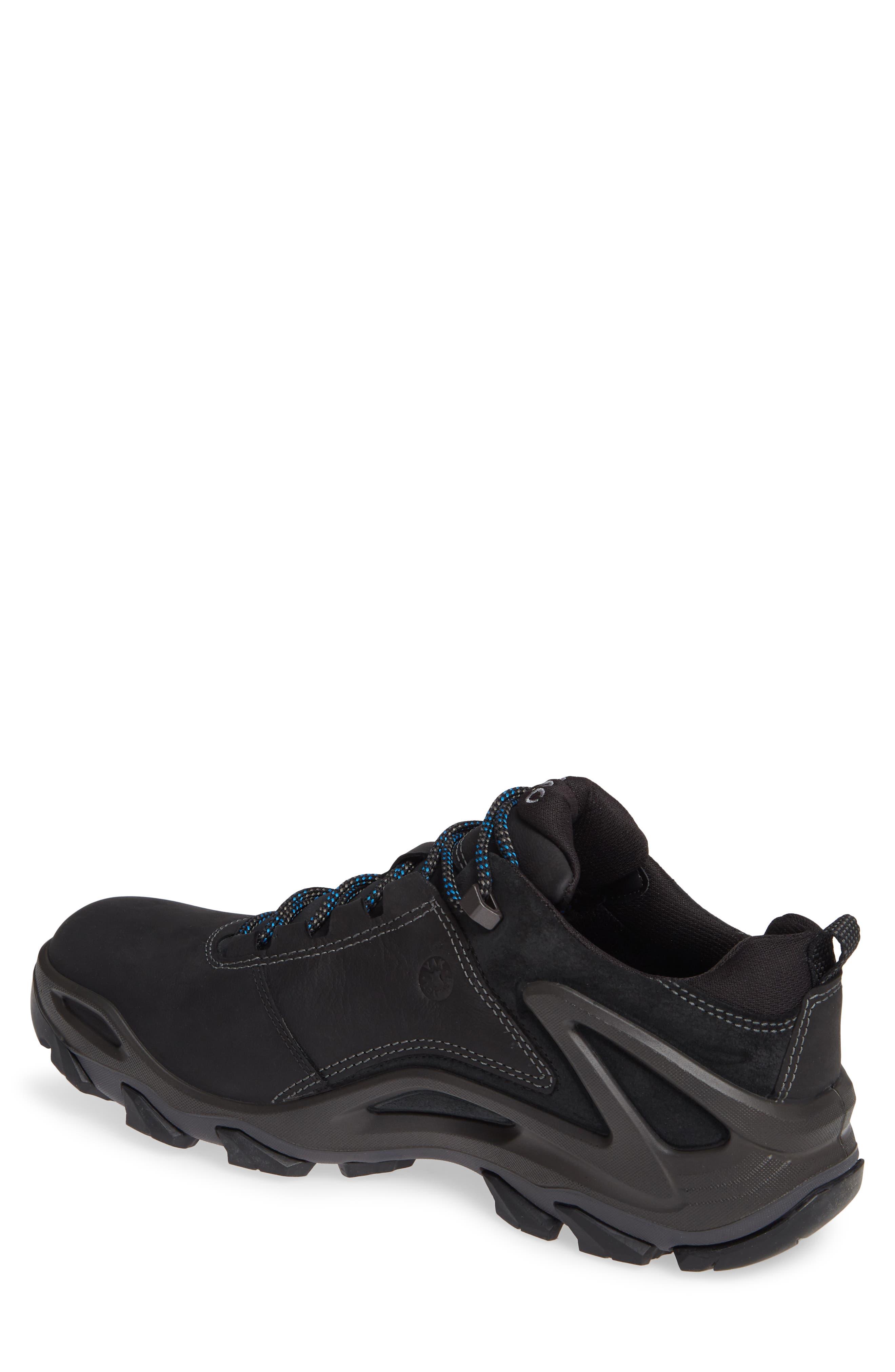 Terra Evo GTX Low Hiking Shoe,                             Alternate thumbnail 2, color,                             009