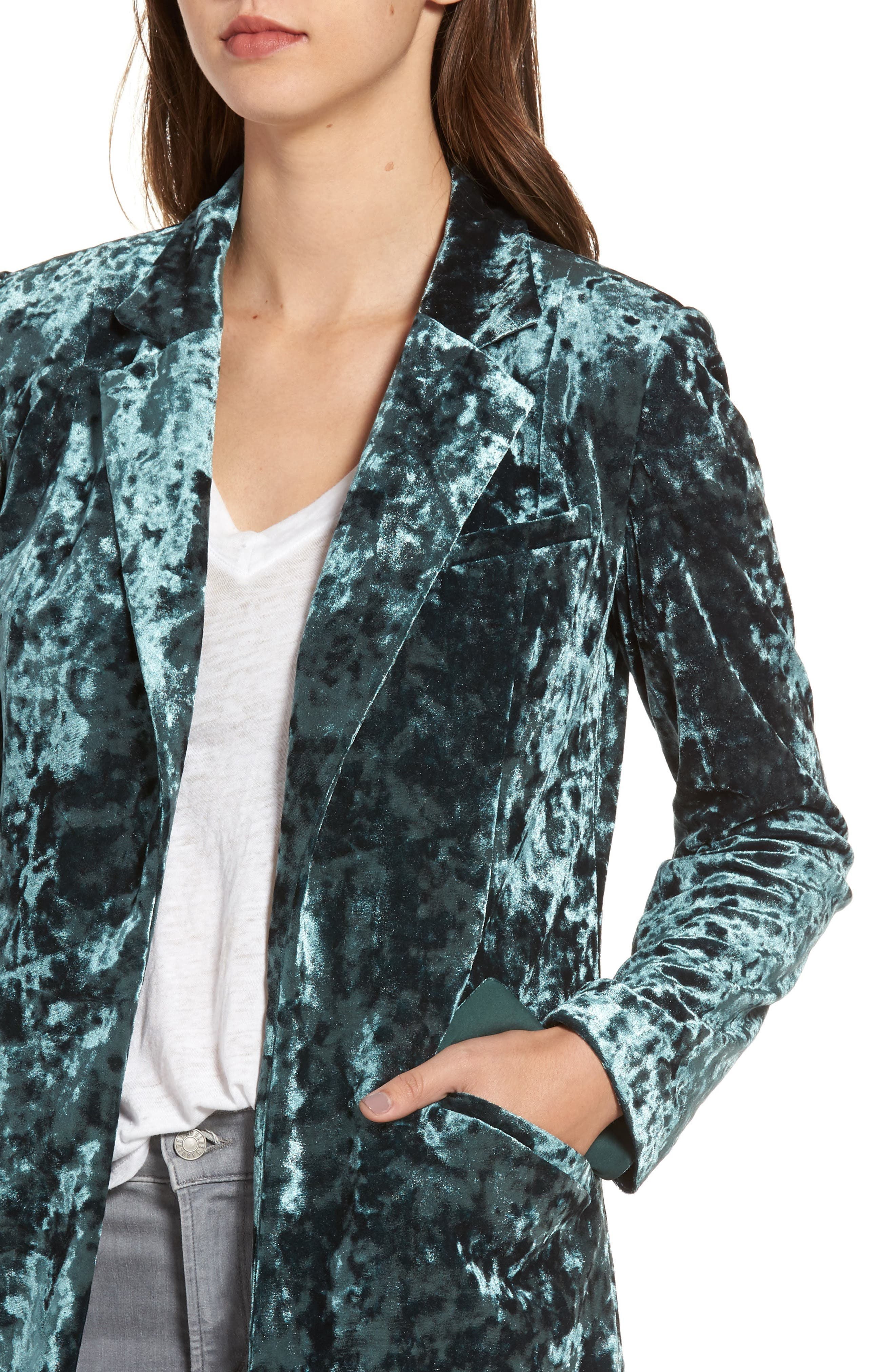 Long Velour Jacket,                             Alternate thumbnail 4, color,