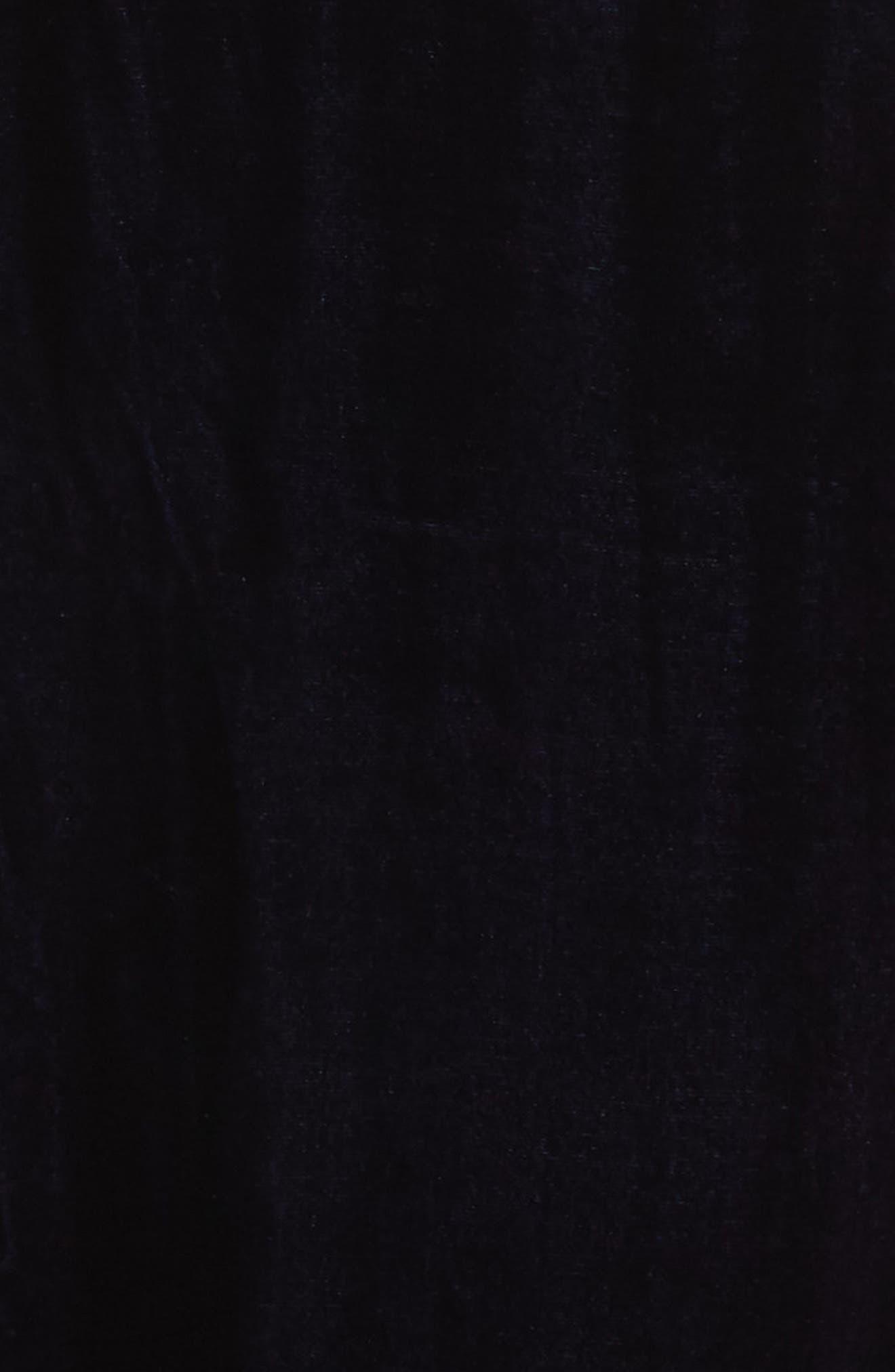 High Rise Velvet Ankle Pants,                             Alternate thumbnail 5, color,                             419