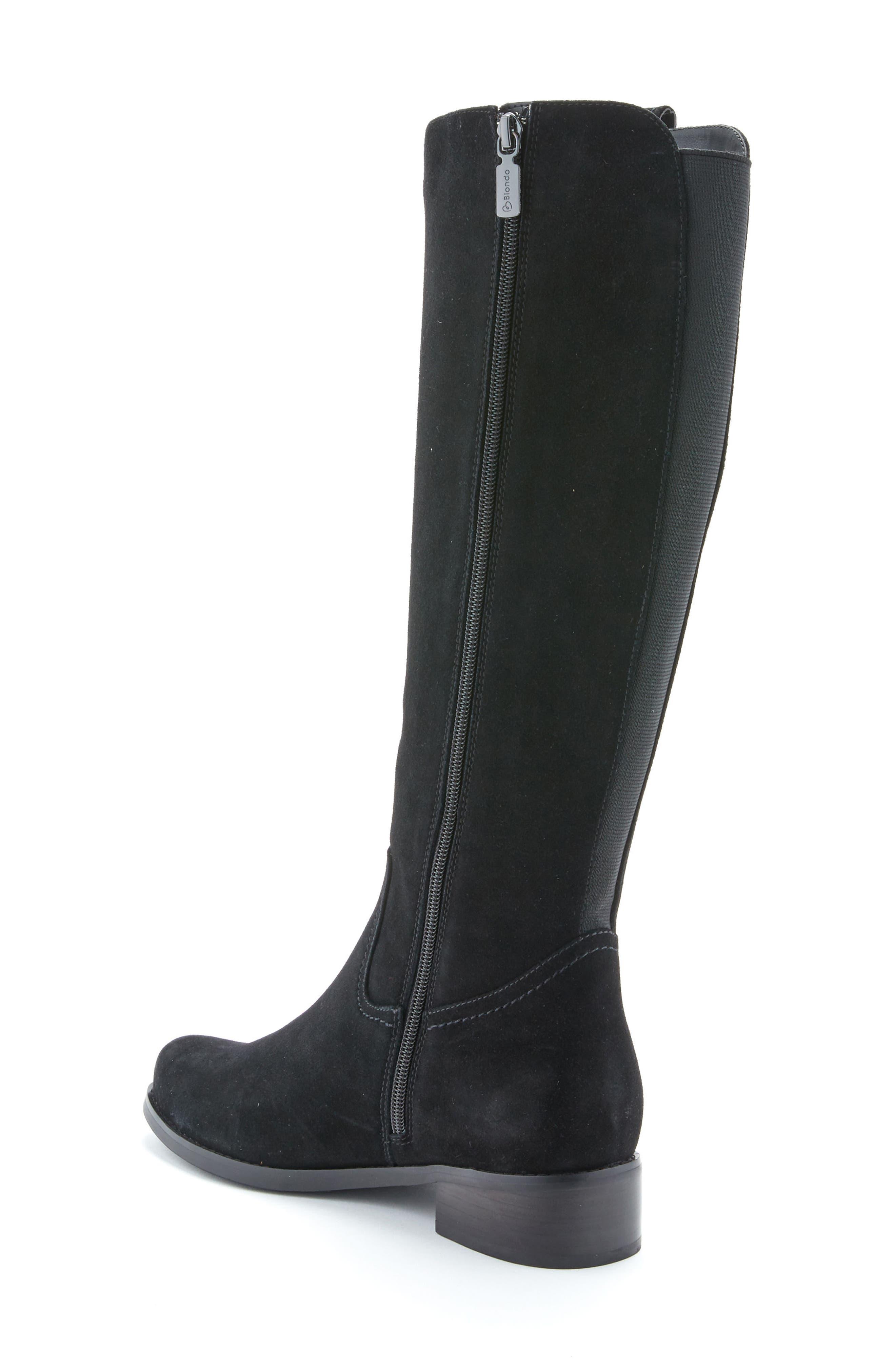 'Velvet' Waterproof Riding Boot,                             Alternate thumbnail 2, color,                             006