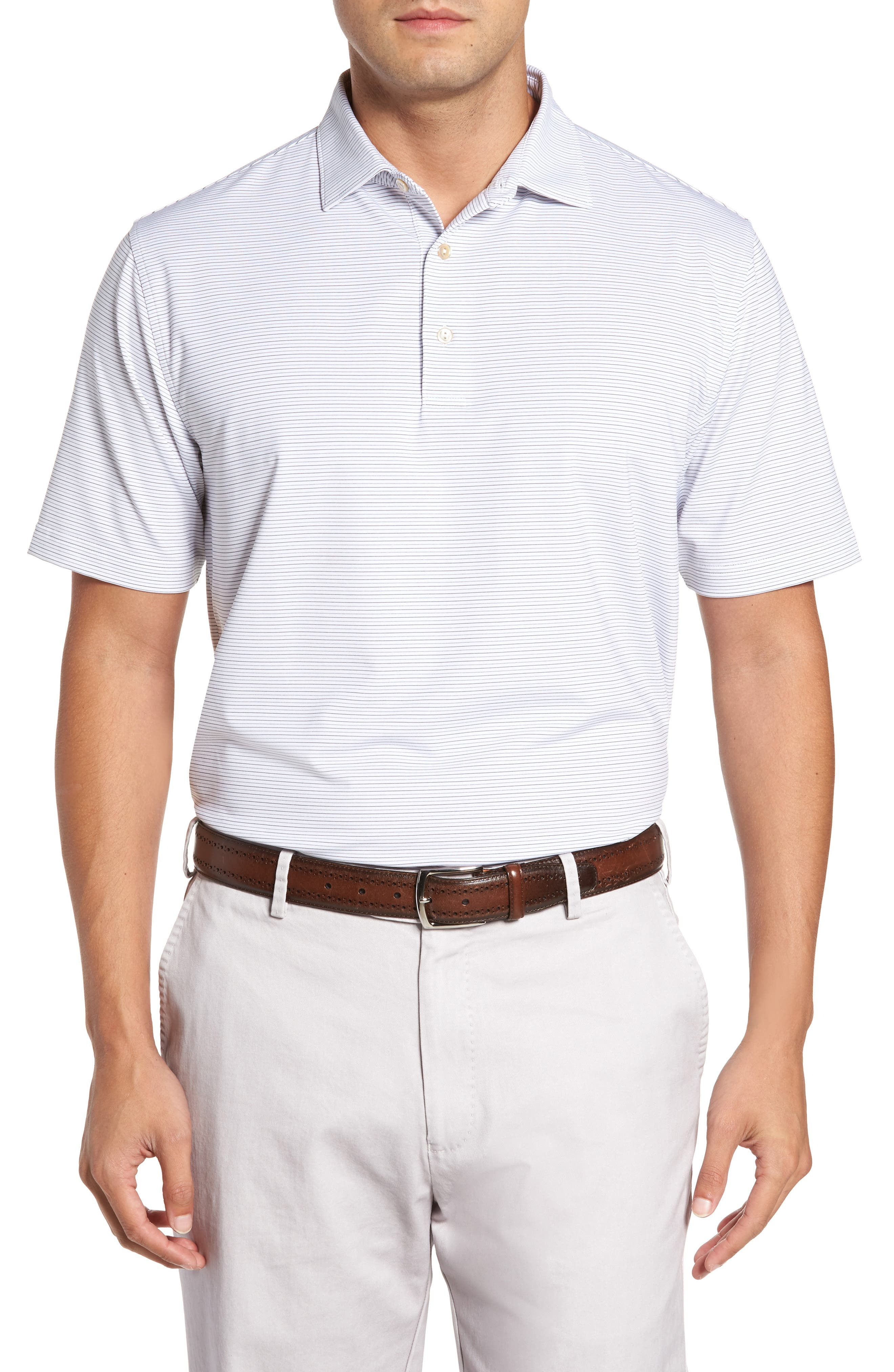 Chesapeake Stripe Stretch Jersey Polo,                         Main,                         color, 146