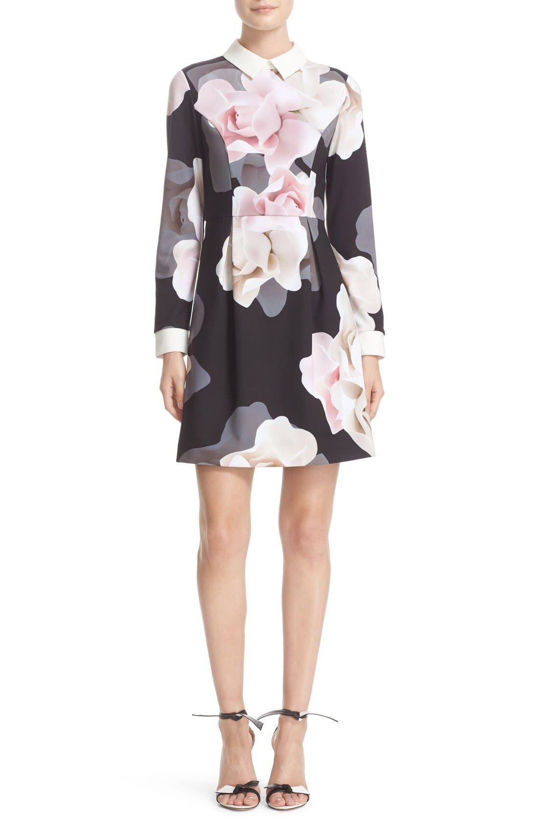 TED BAKER LONDON,                             Porcelain Rose Print Contrast Trim Fit & Flare Dress,                             Main thumbnail 1, color,                             001