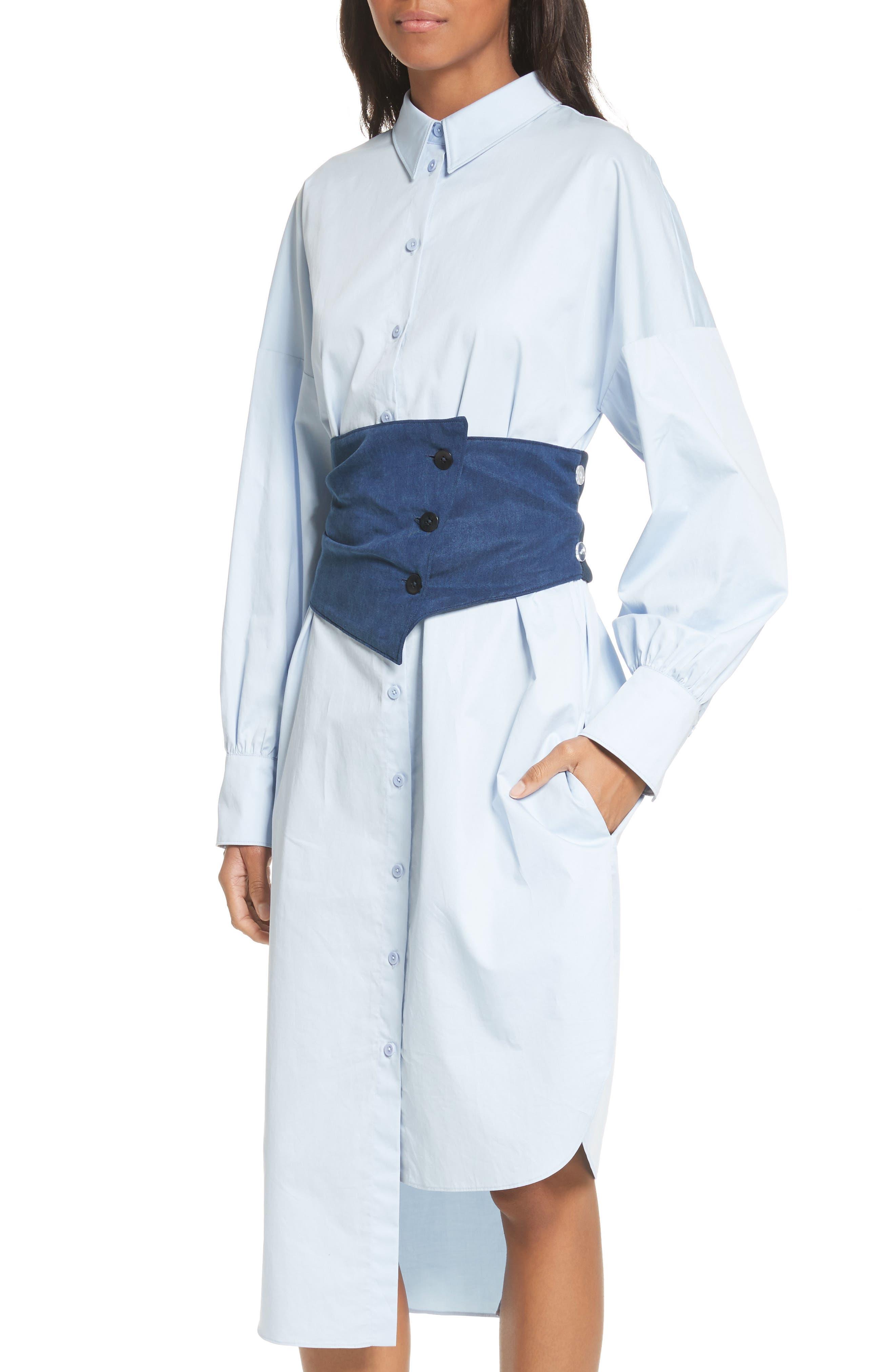 Asymmetrical Cotton Shirtdress,                             Alternate thumbnail 2, color,                             400