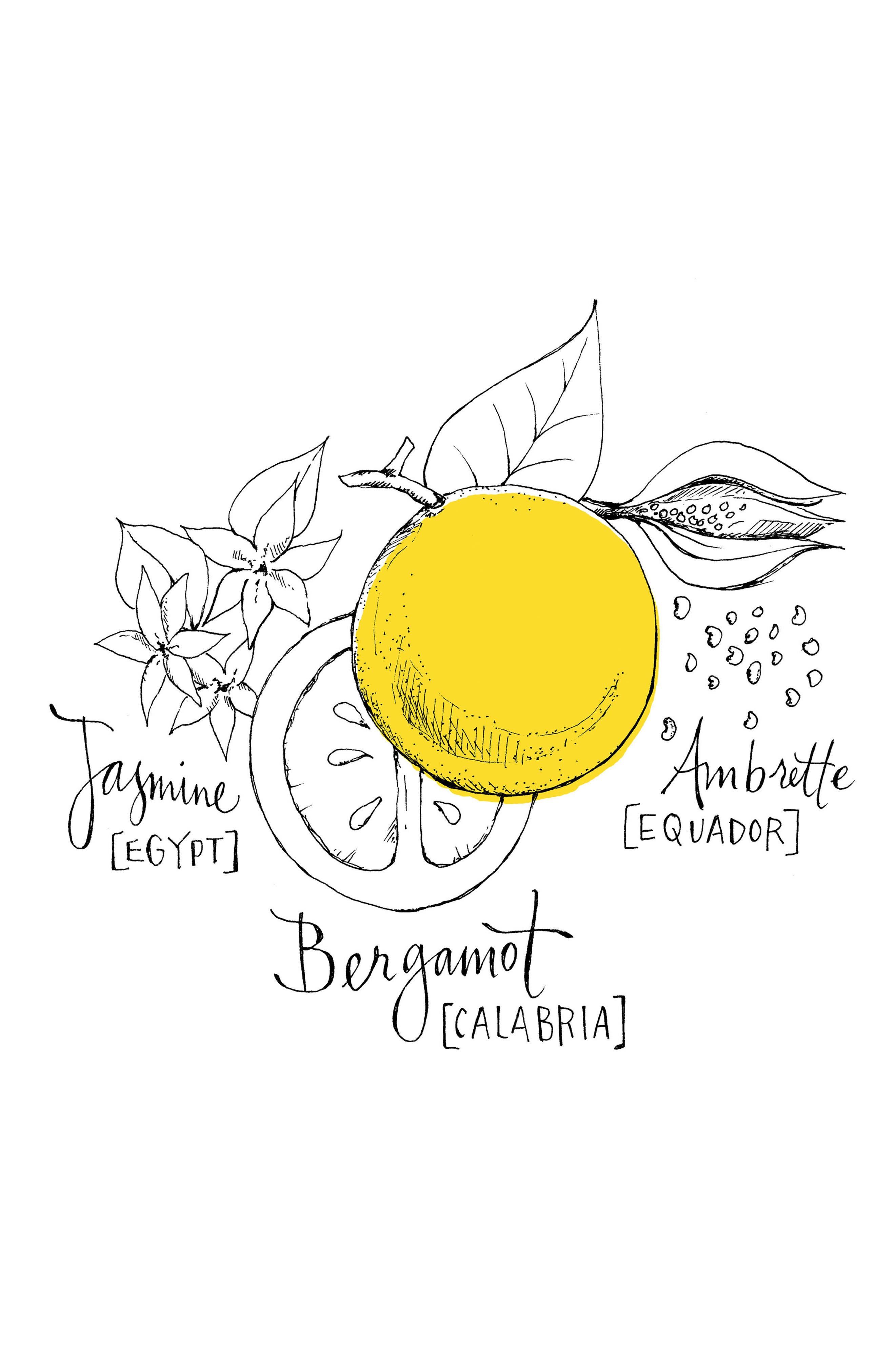 Bergamote Soleil Body & Hair Shower Gel,                             Alternate thumbnail 2, color,                             NO COLOR