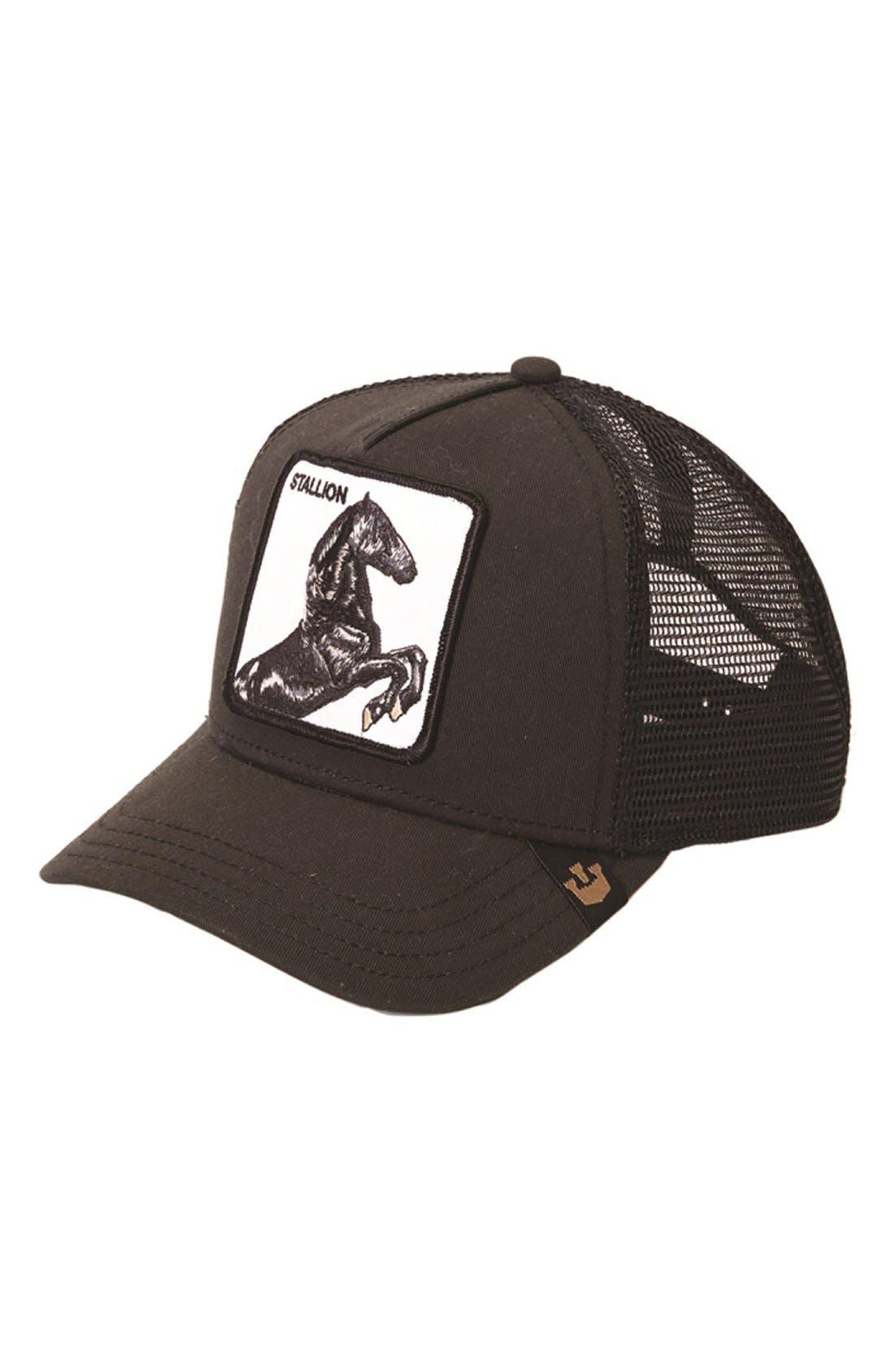 'Stallion' Trucker Hat,                             Main thumbnail 1, color,                             BLACK