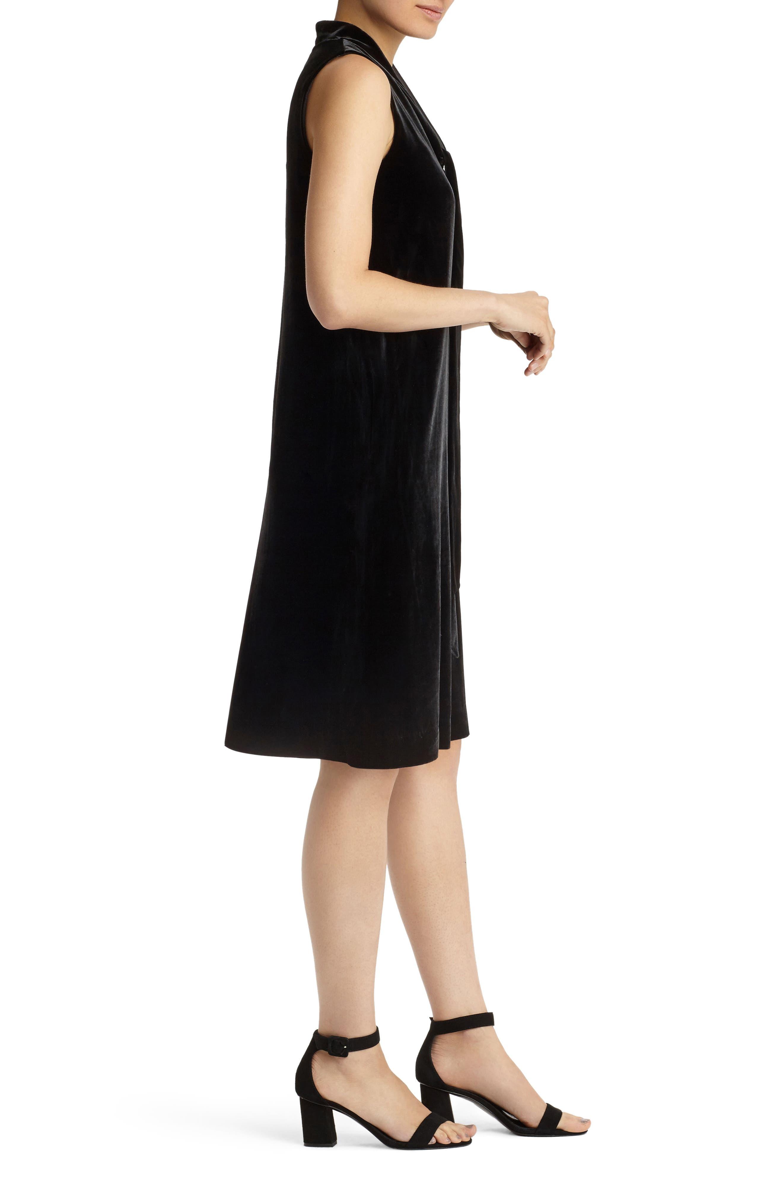 Ronan Velvet Dress,                             Alternate thumbnail 5, color,