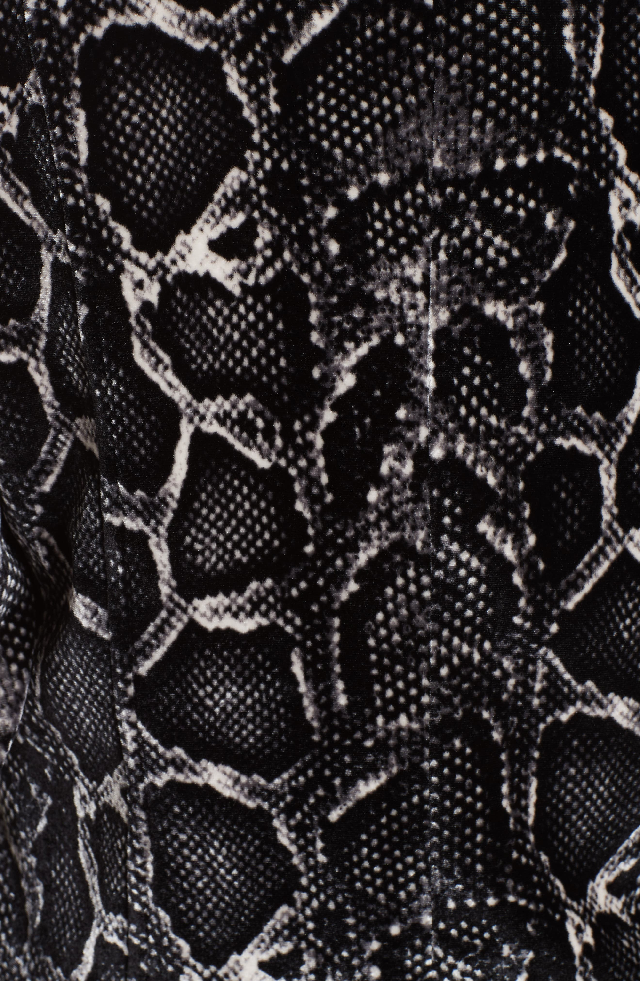Snake Print Velvet Jacket,                             Alternate thumbnail 6, color,                             WASHED BLACK COMBO