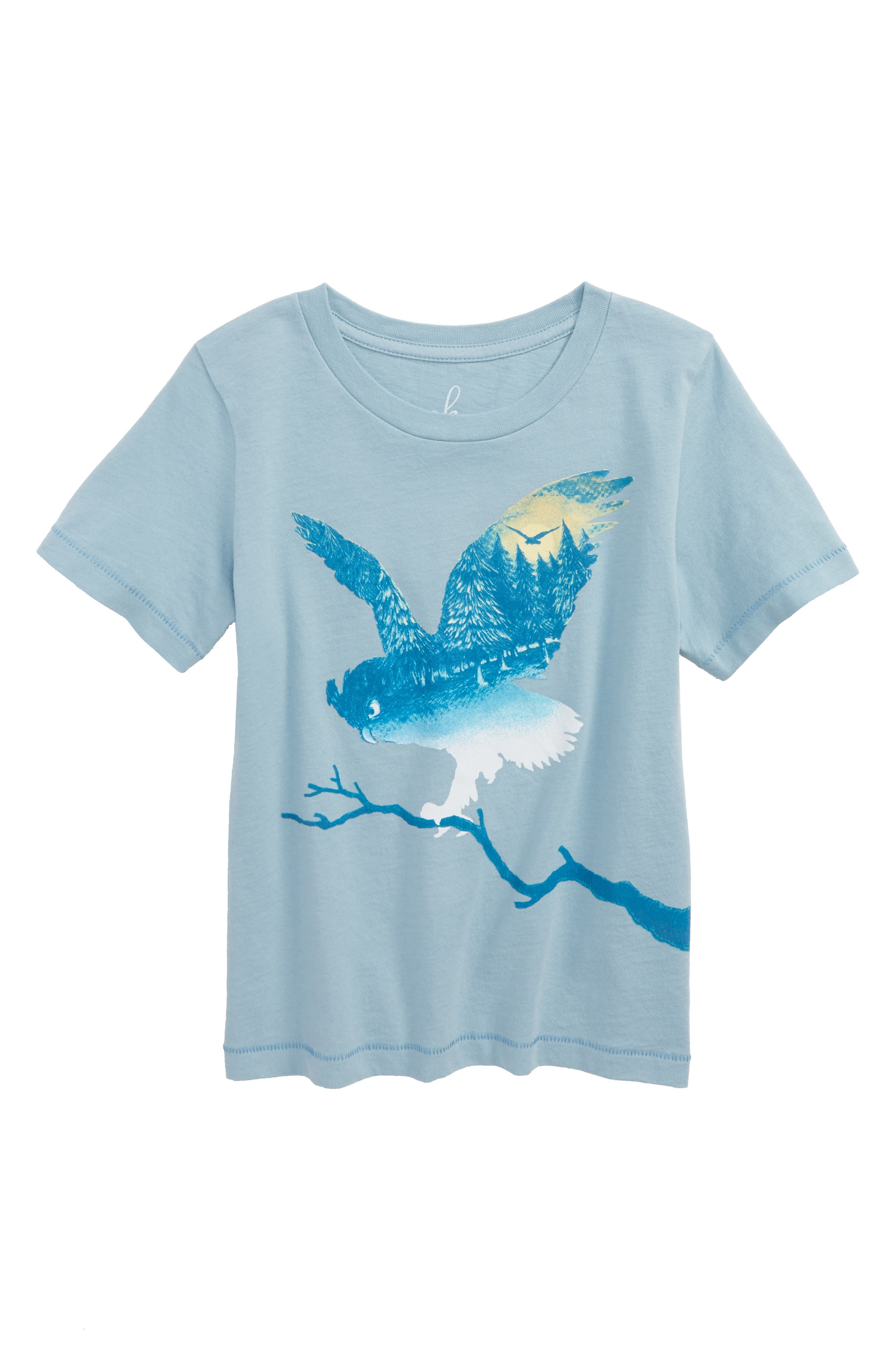 Owl Graphic Tee,                         Main,                         color,
