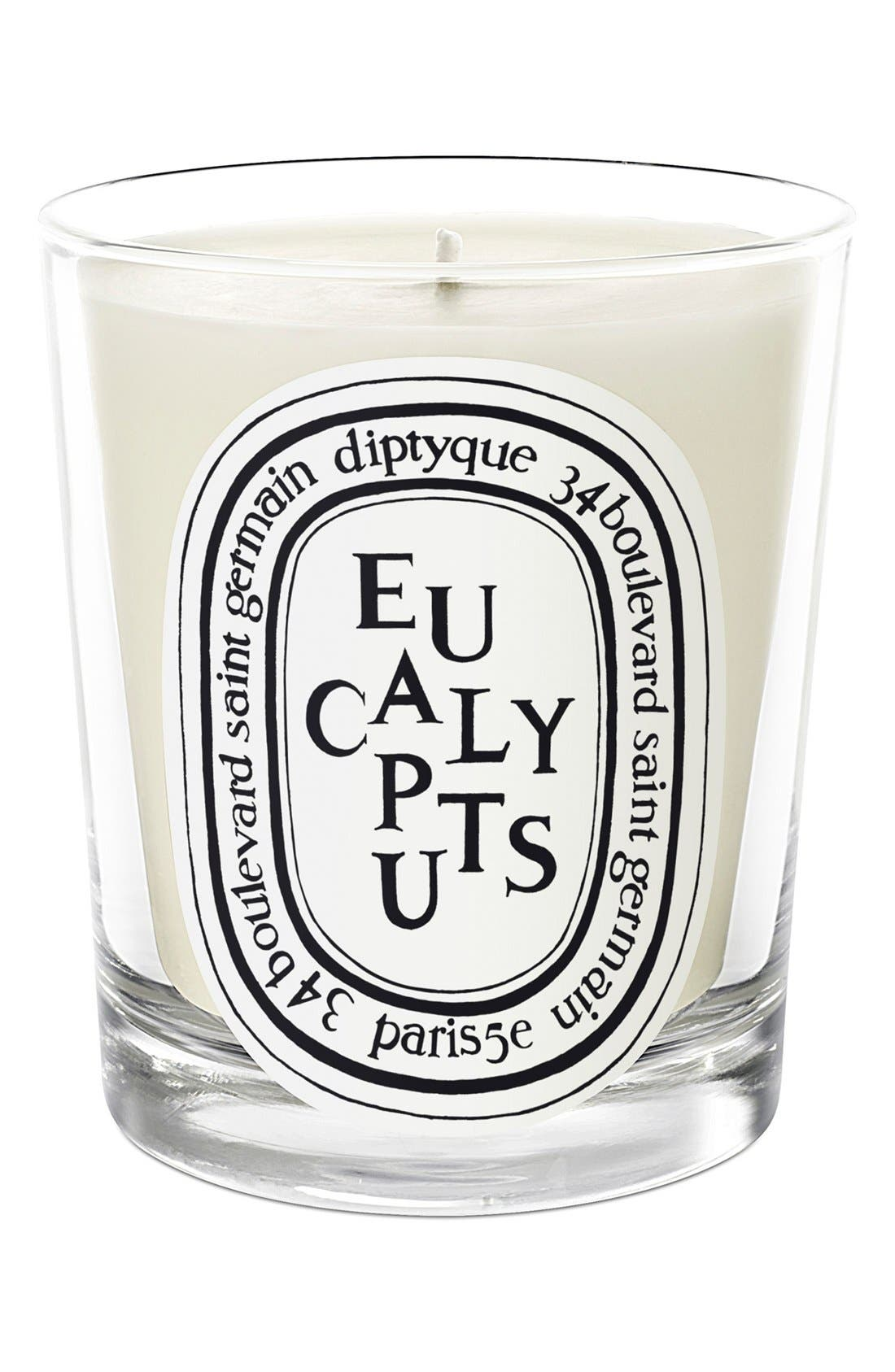 Eucalyptus Candle,                             Main thumbnail 1, color,                             NO COLOR