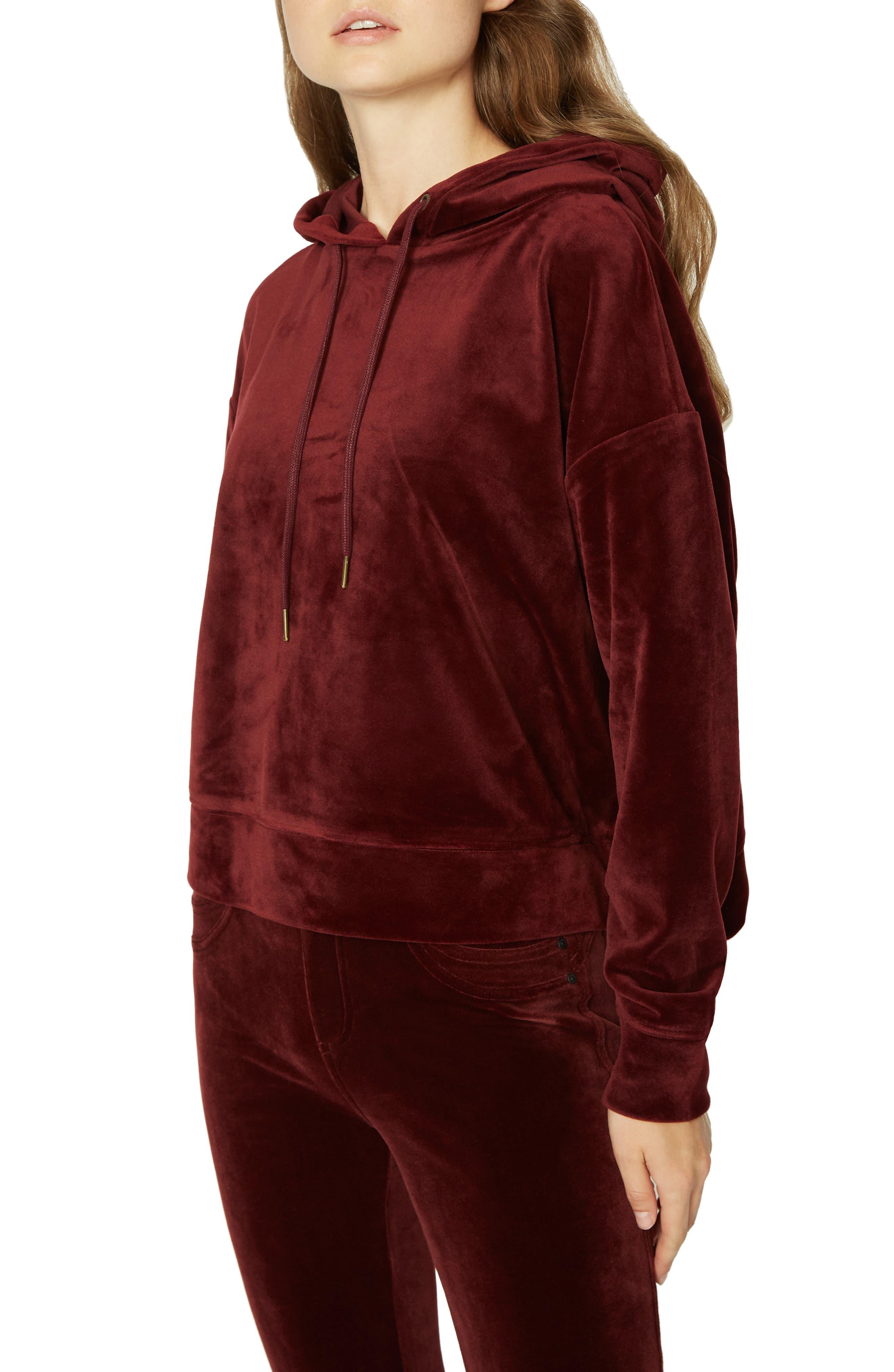 SANCTUARY,                             Melrose Brigade Velour Hoodie Sweater,                             Alternate thumbnail 3, color,                             602
